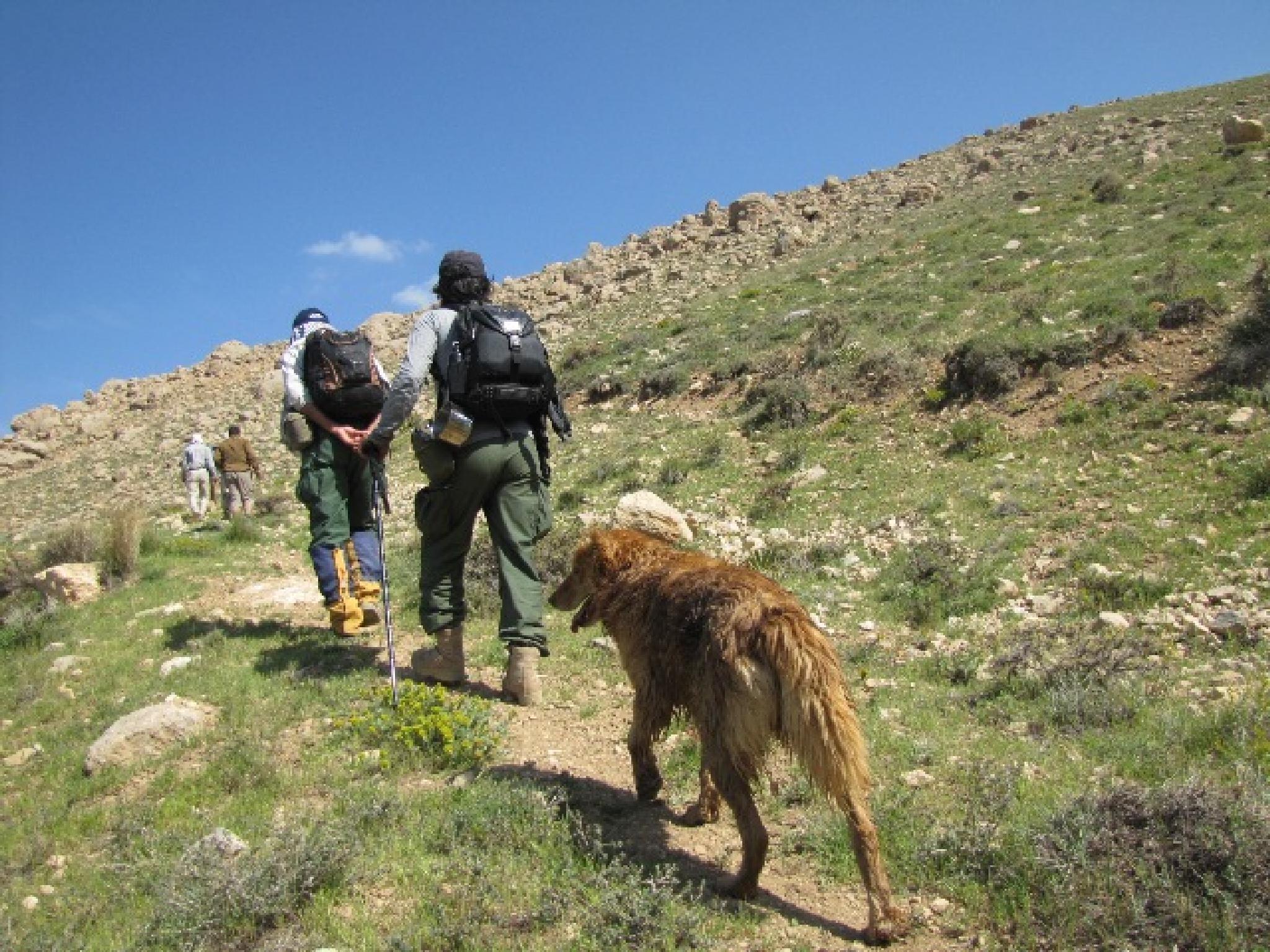 کوهنوردی در ارتفاعات کرکس نطنز اصفهان ایران by rafie