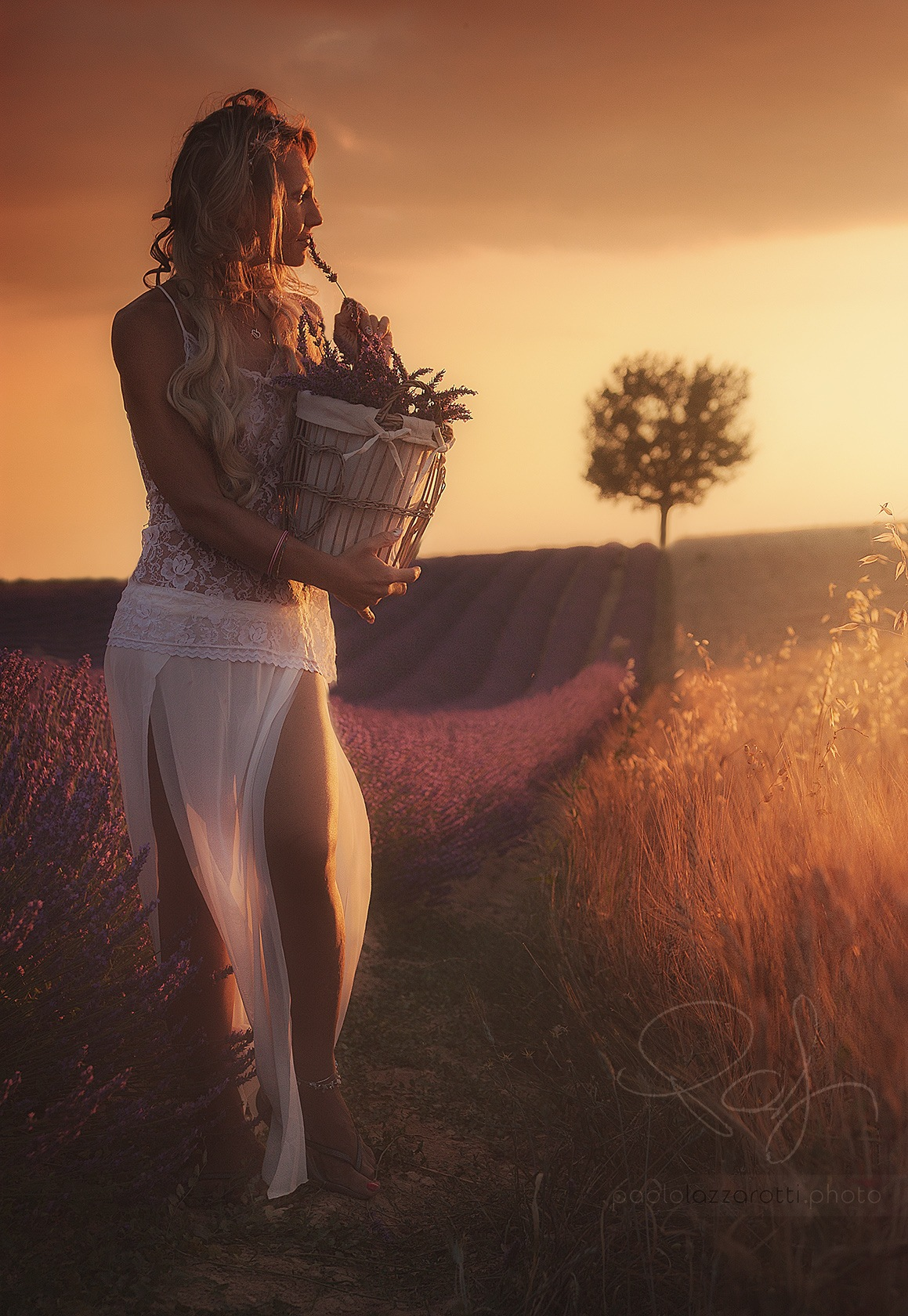 Photo in Portrait #girl #woman #sunset #profile #romantic #lavander #wheat #countryside #tree #glowing #gold #orange #beauty #fashion