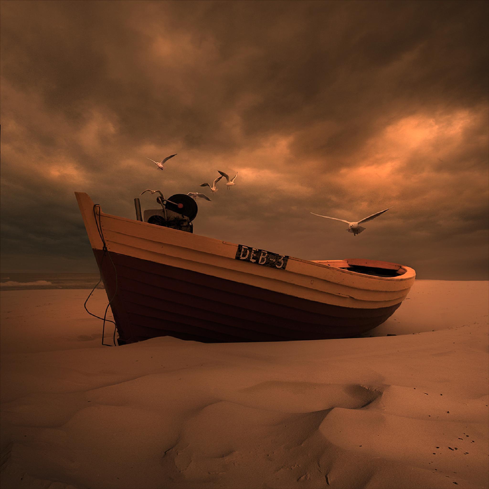Photo in Landscape #boat #seagull #beach #photoshop