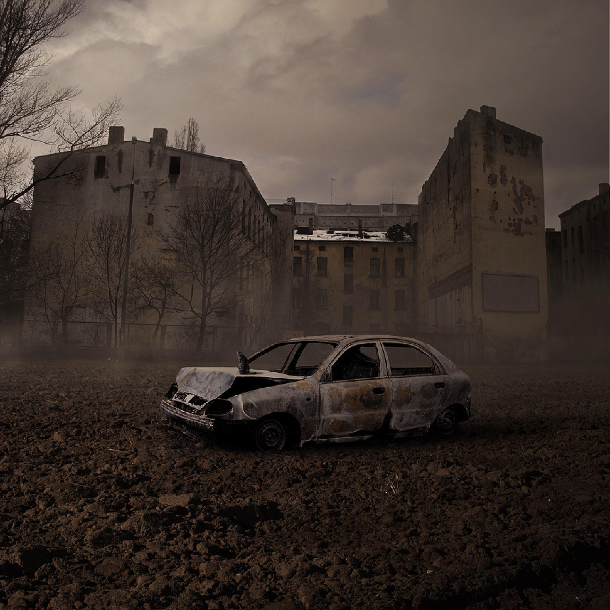 Photo in Abstract #wreck #cat #city #photoshop #dark