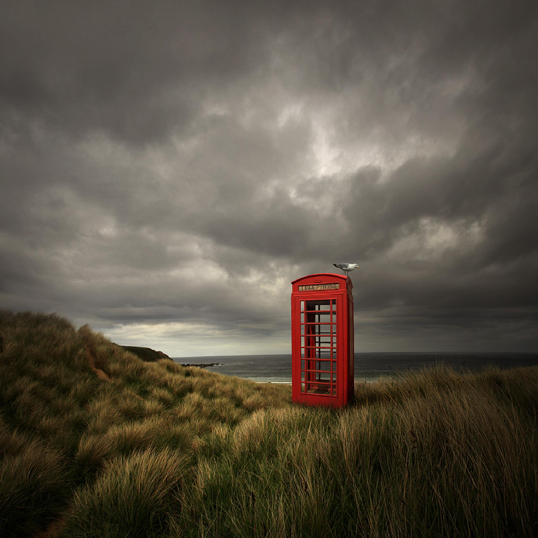 Photo in Abstract #phone booth #photoshop #bird #scotland #dunes