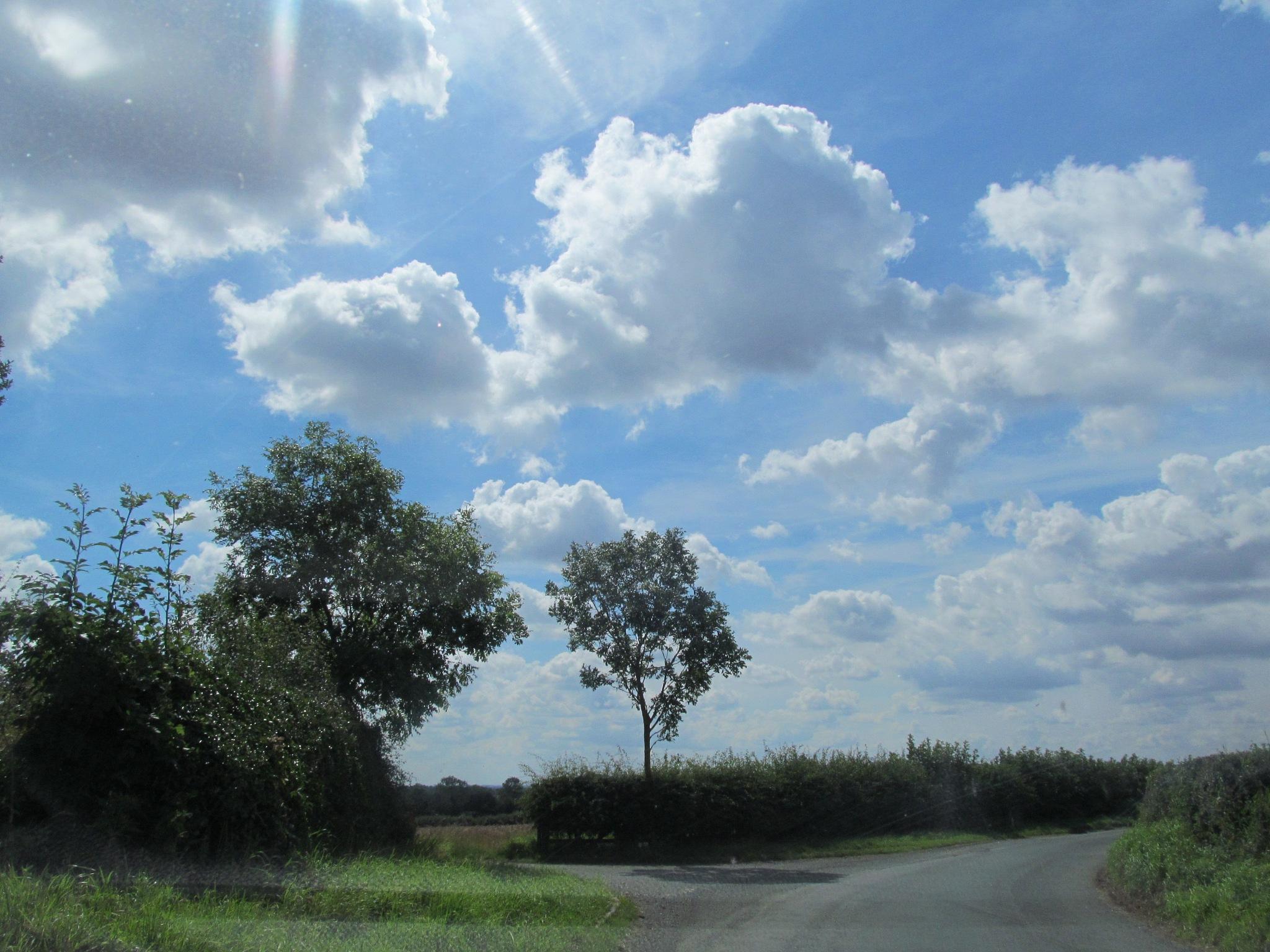 Sky by joan croll