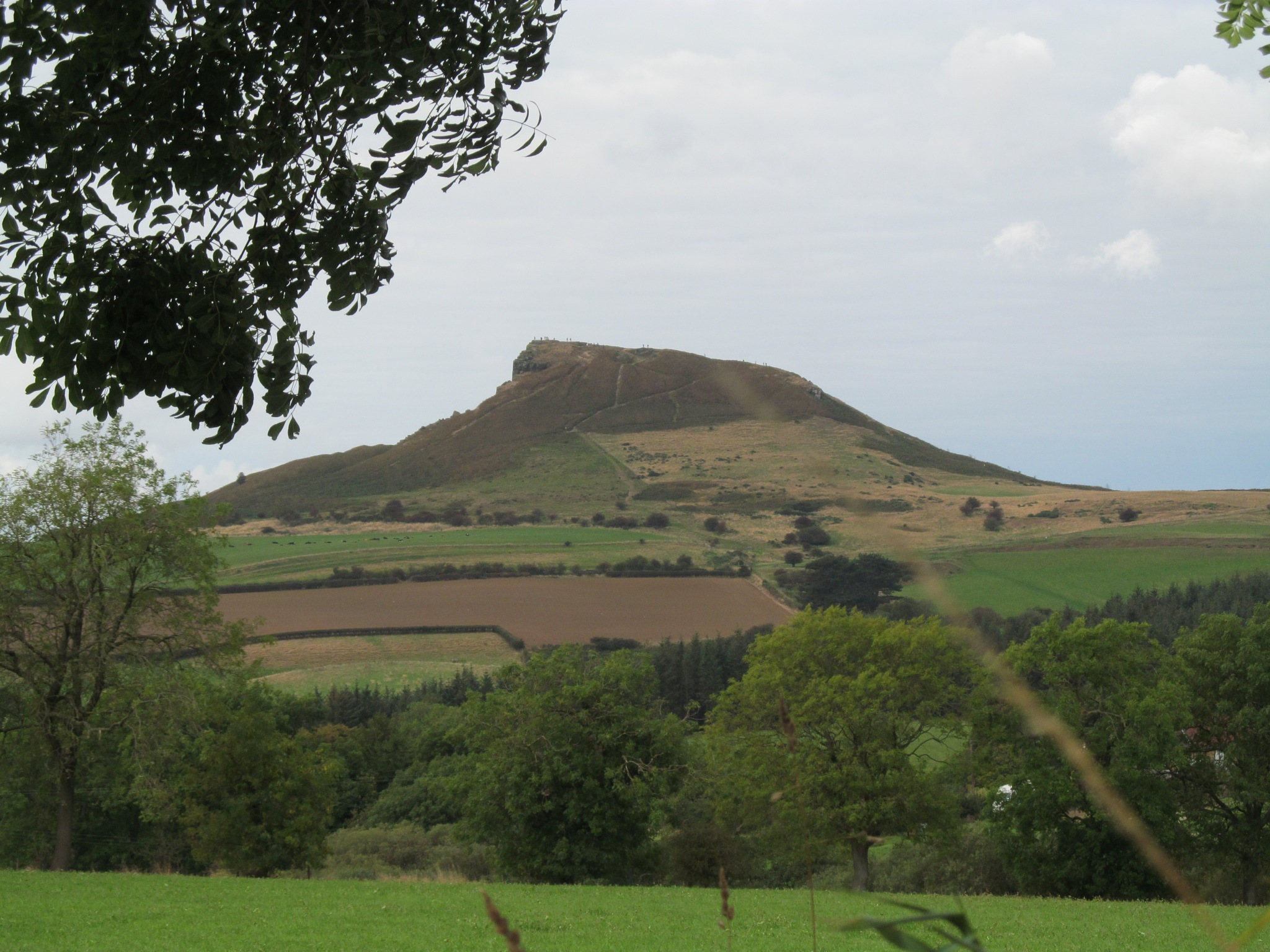Roseberry topping by joan croll