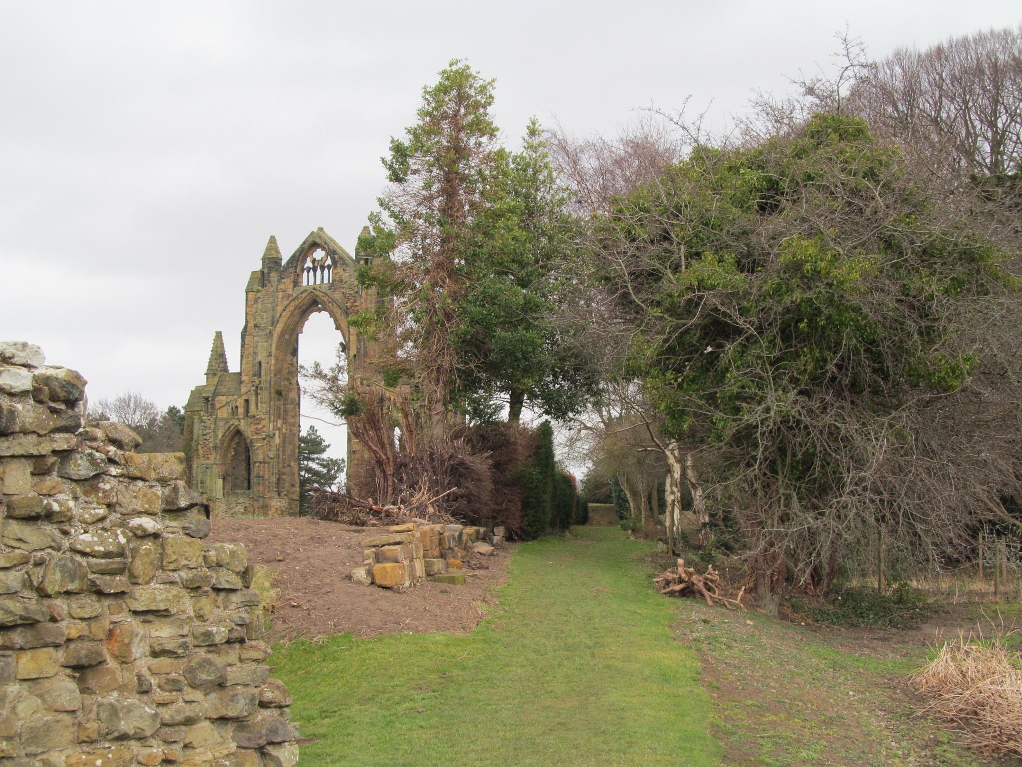 Priory ruins by joan croll