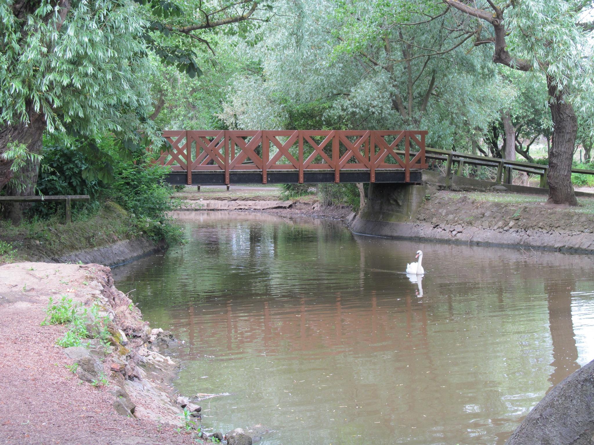 Bridge by joan croll