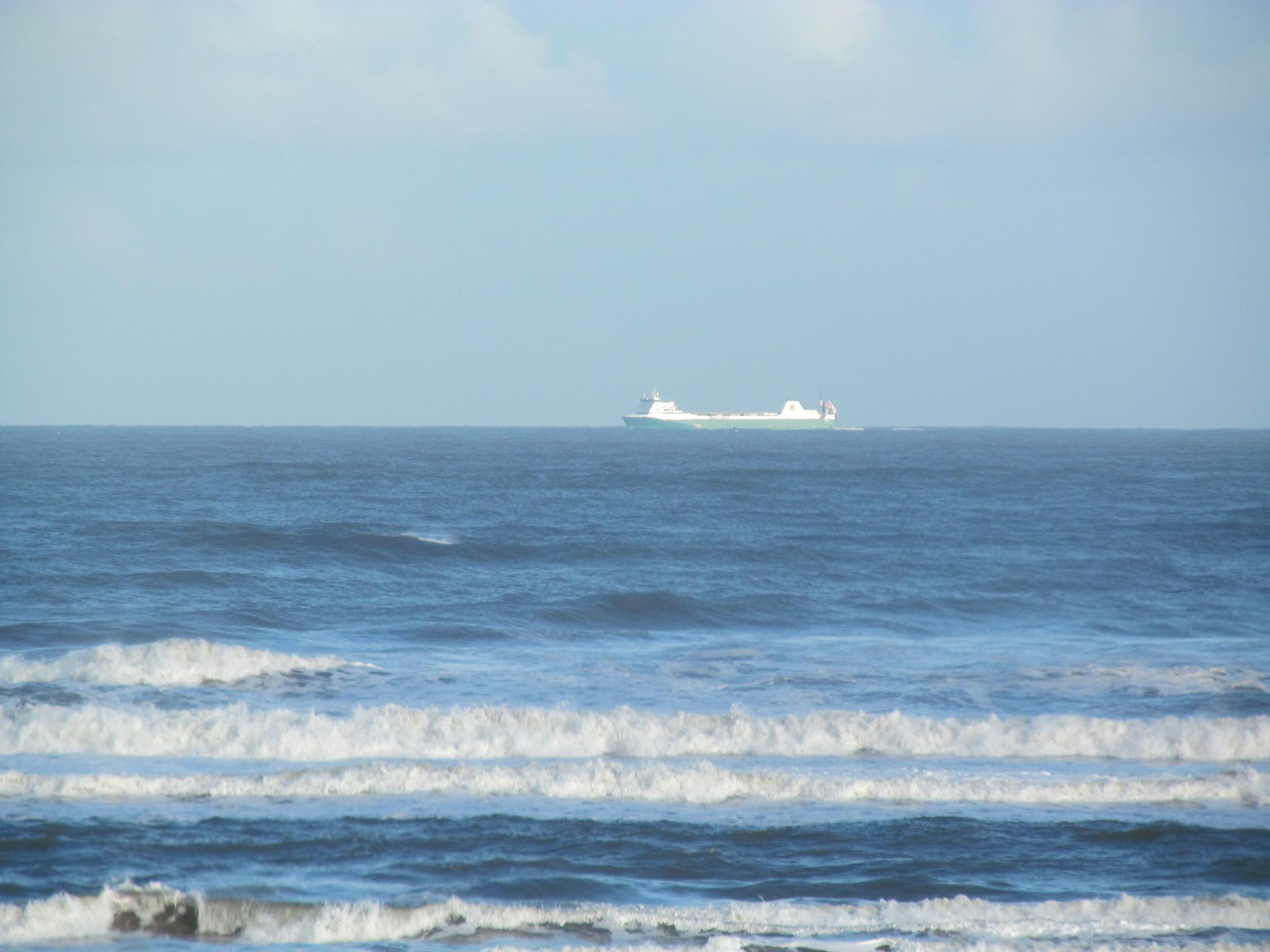 The sea by joan croll