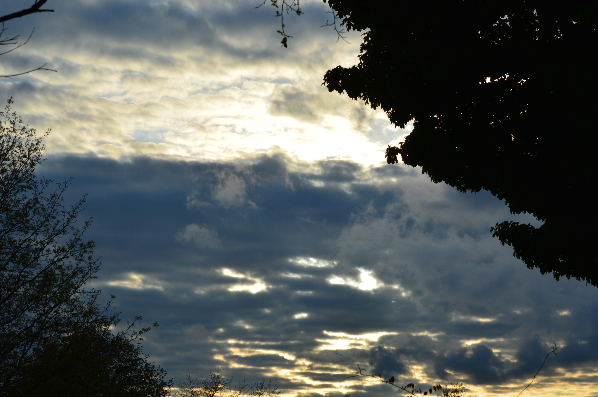 Photo in Nature #clouds #evening #spring