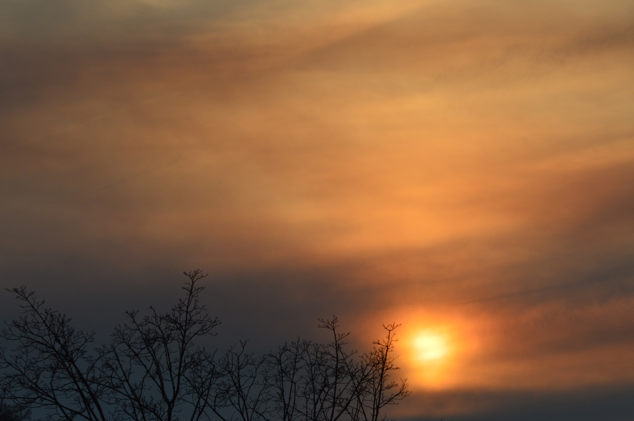 First Spring Sunset 2019 by ERock23