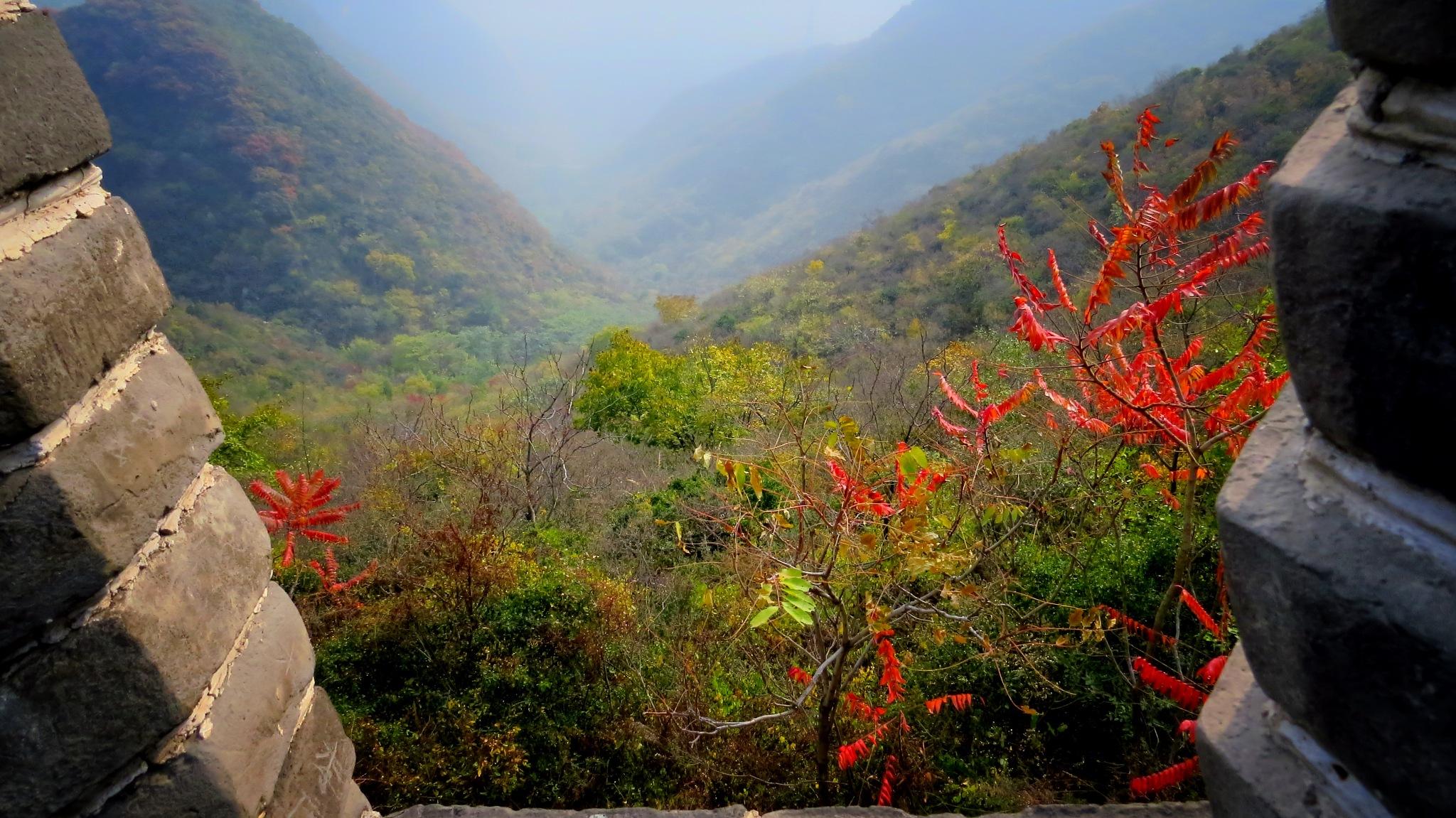 Far East Landscape by Jorge Antonio Garcia