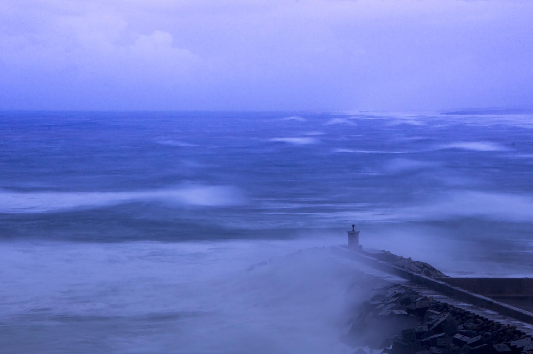 Photo in Landscape #sea #black sea #turkey