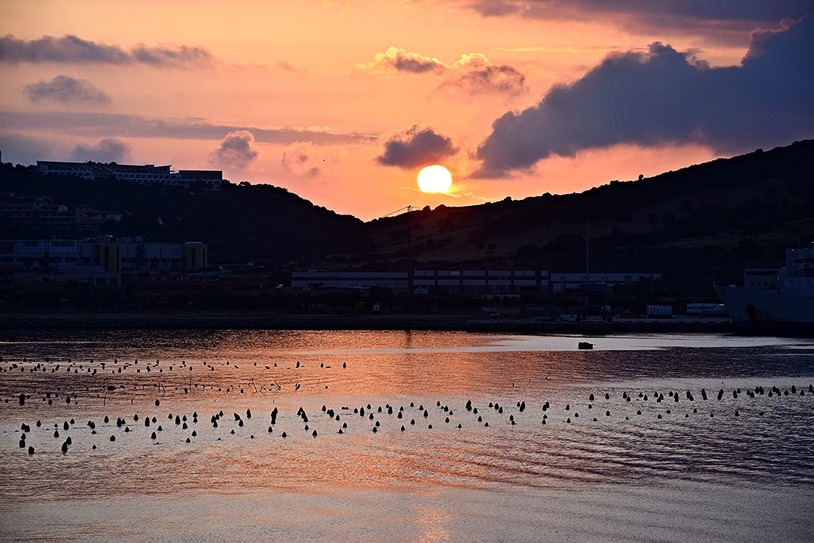 Sunrise  by Diana