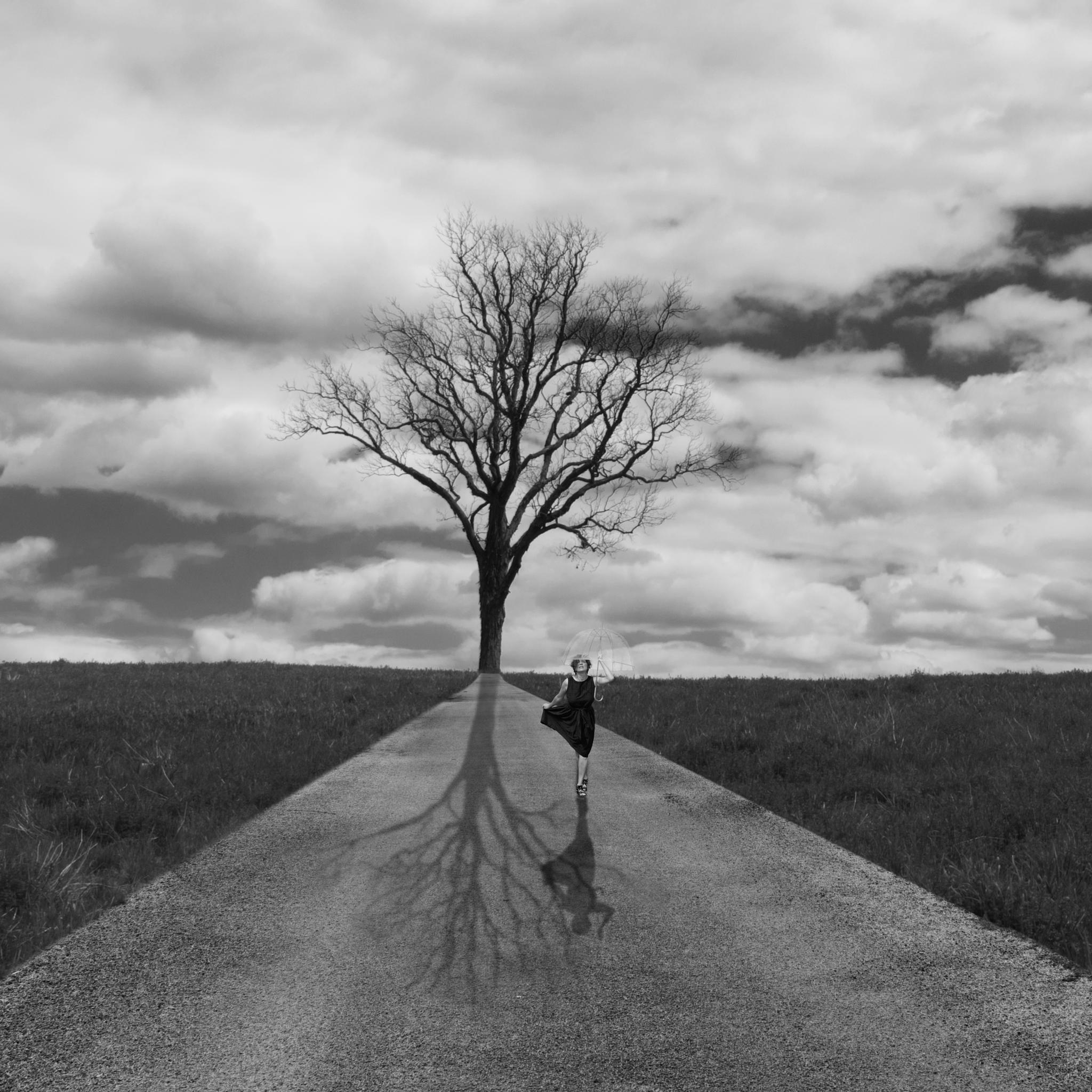 Lone Tree by WillieChu