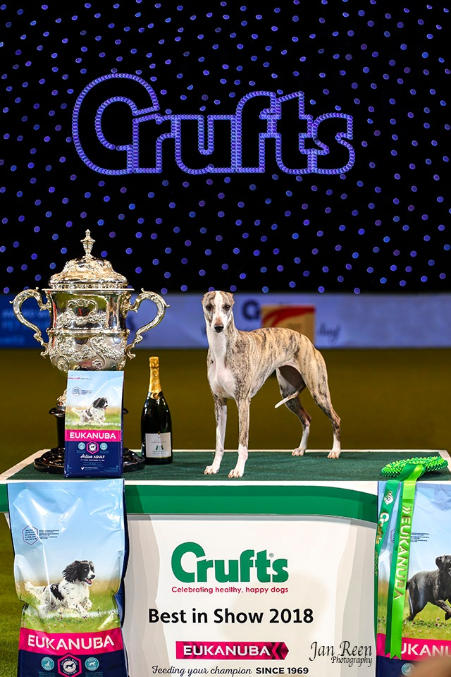 Crufts 2018... Best in Show by Jan Reen