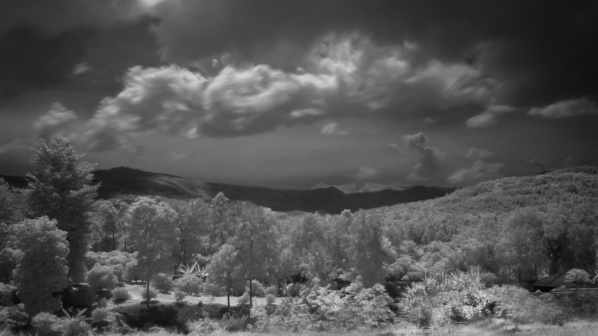 Photo in Landscape #infrared #trees #lanscape #lampang #mountaing #cloud #motion #sky