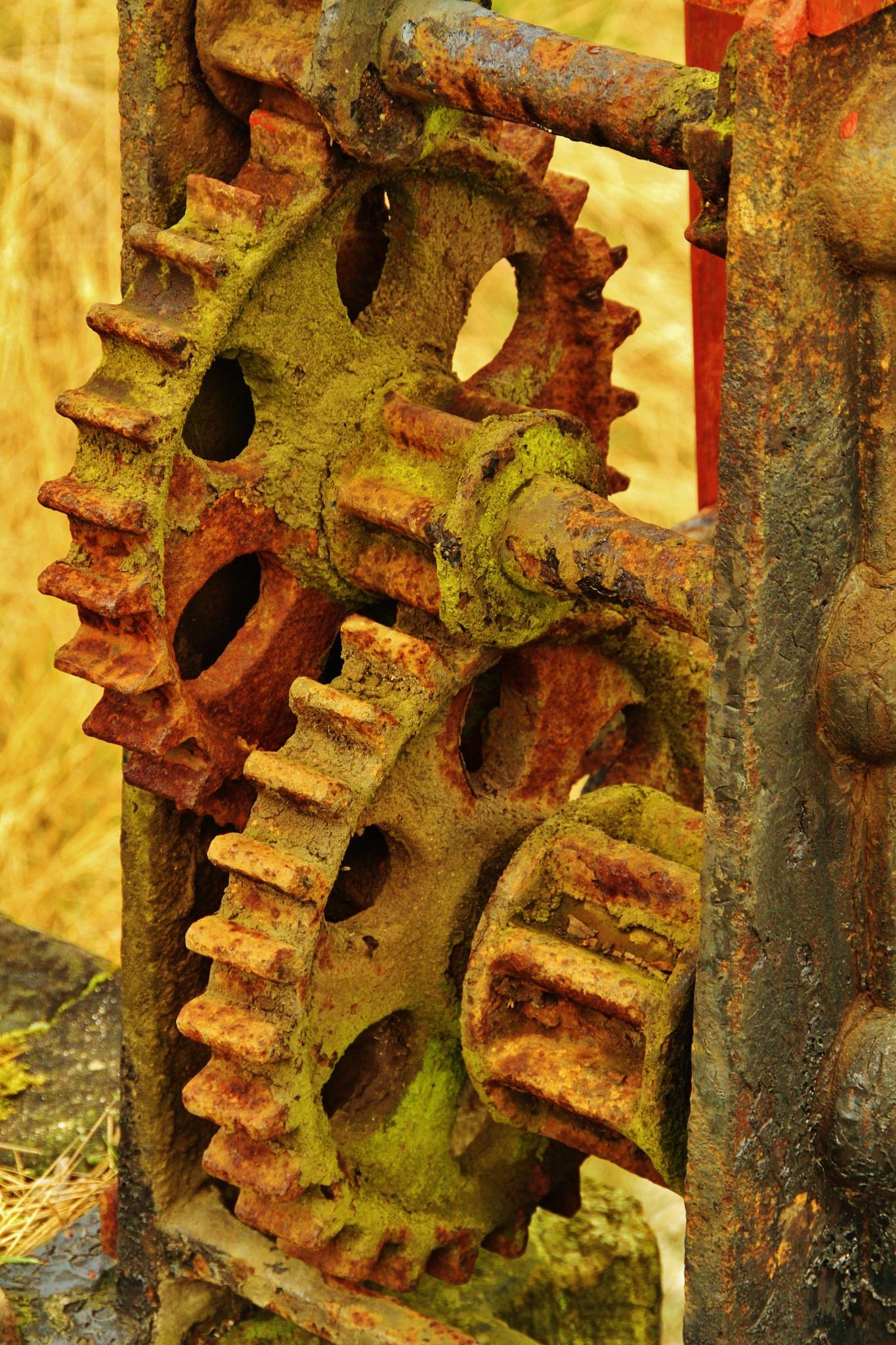 Rusty Cogs & Gears by David N Cath Pinkett