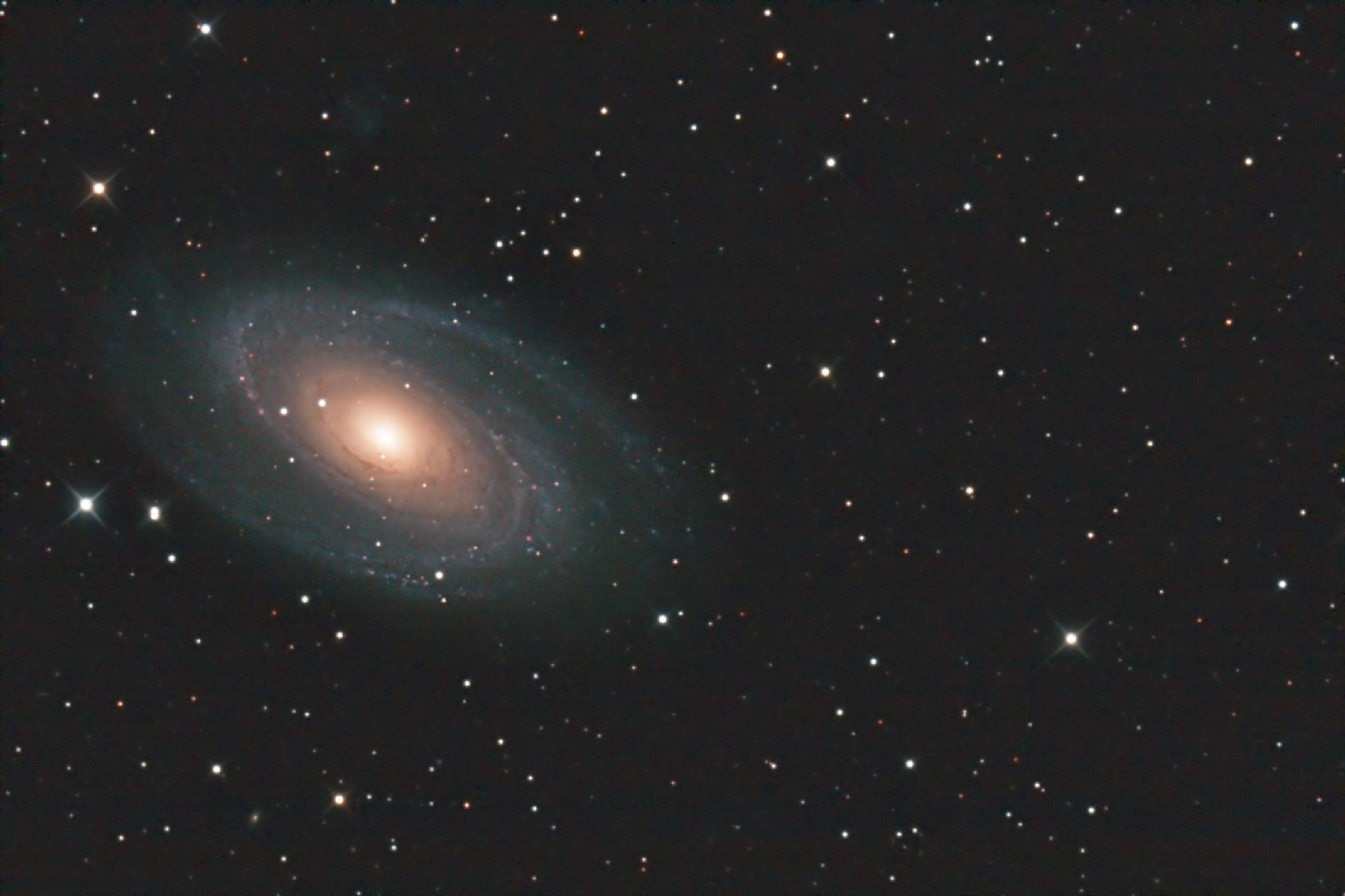 Messier 81 by roberthaeberle