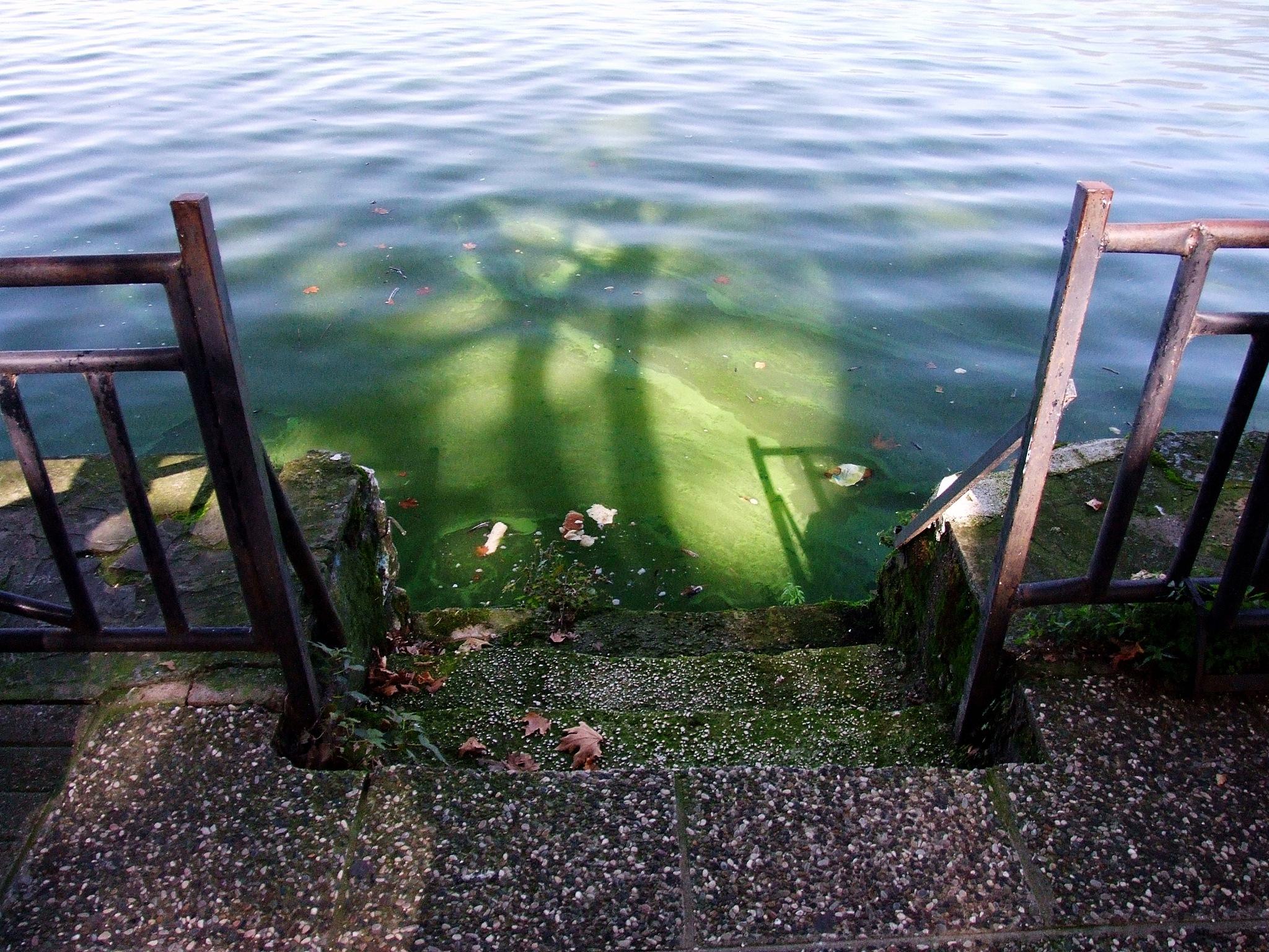 The green light by  Sotiris Hartzavalos