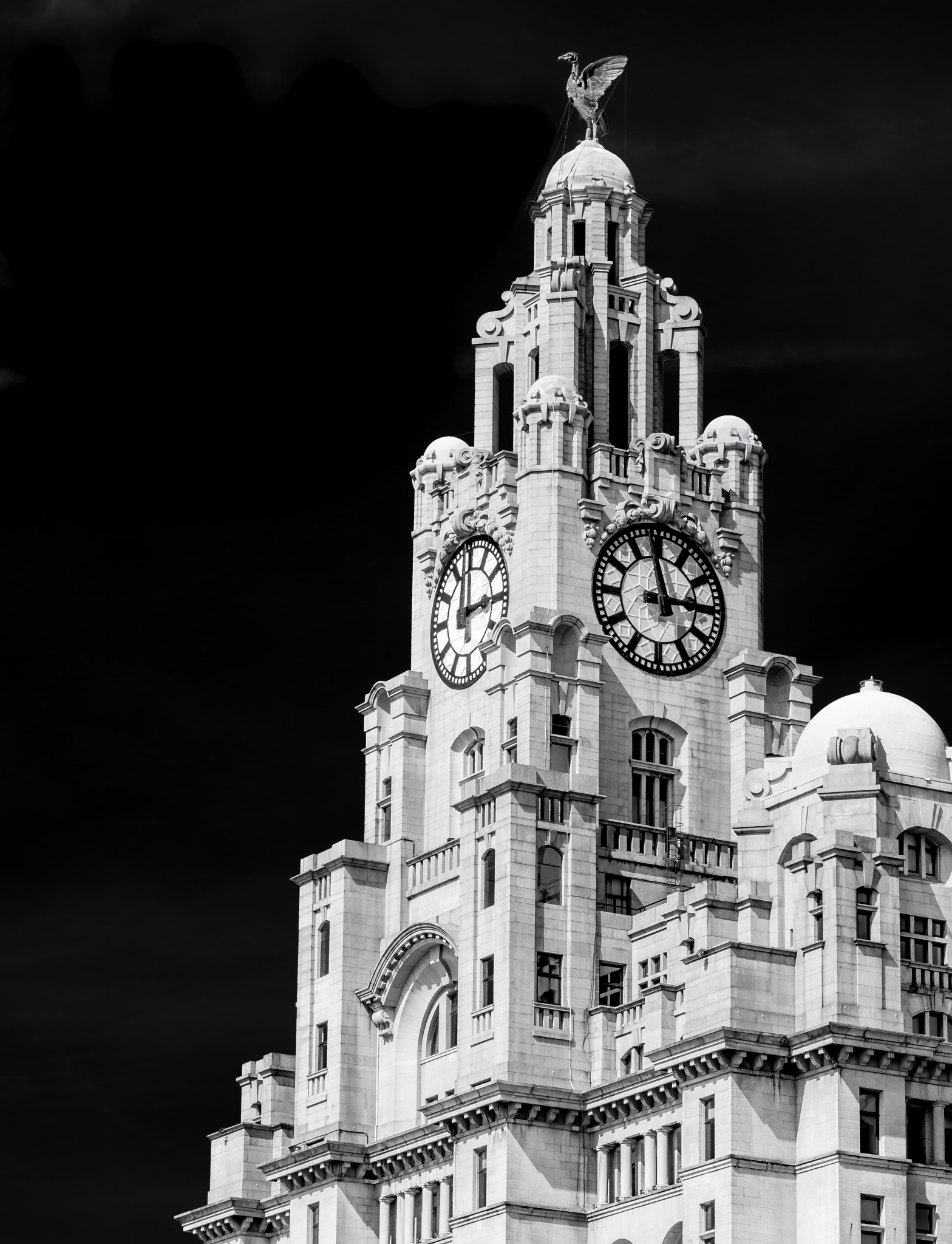 Liver Building by Vincent Malcolm