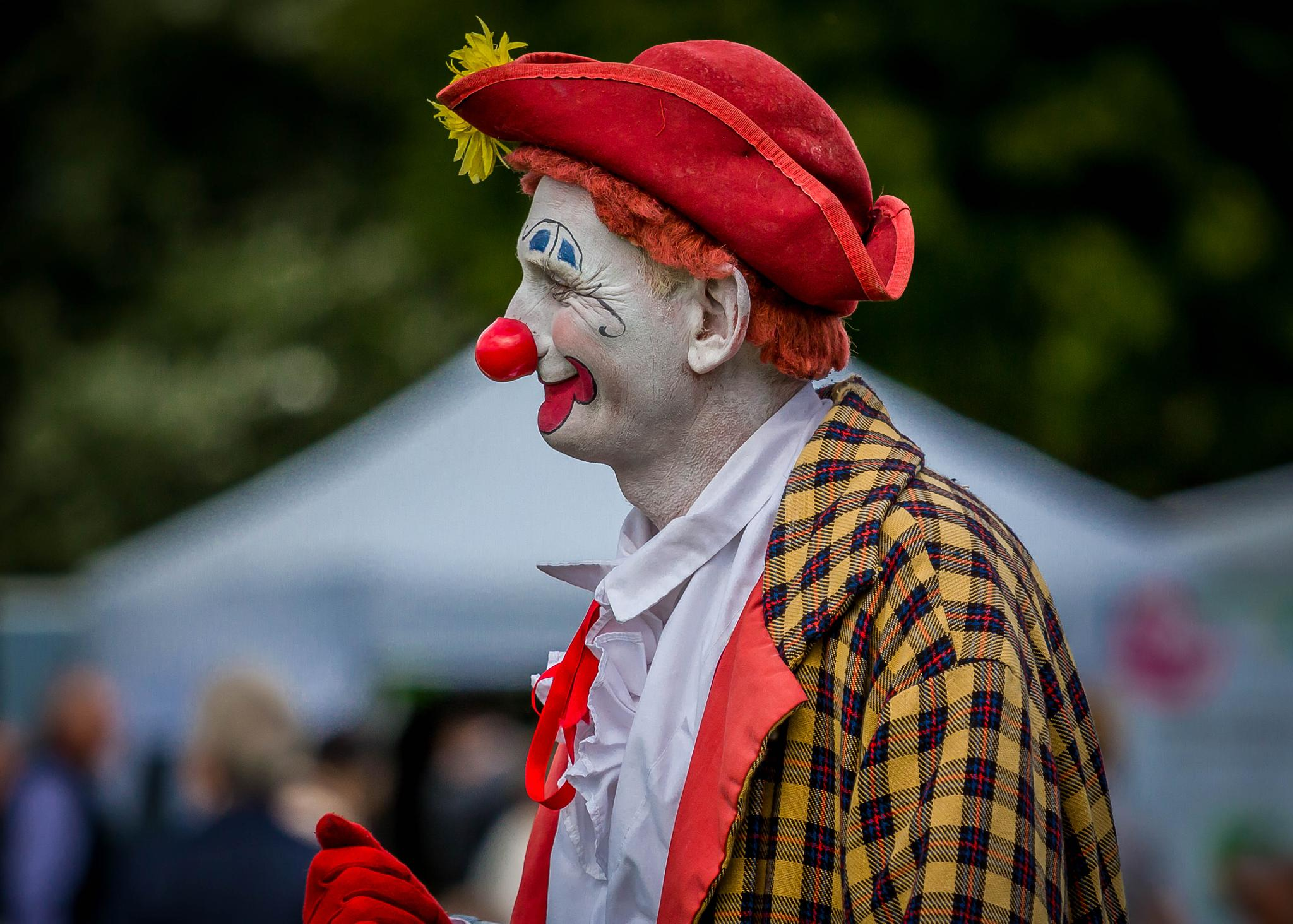 Second Clown in Profile ... by Vincent Malcolm