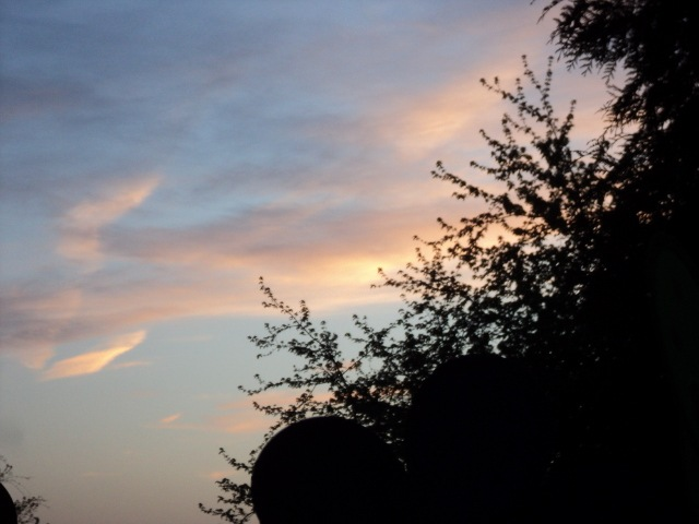 evening  sky  by Michelle