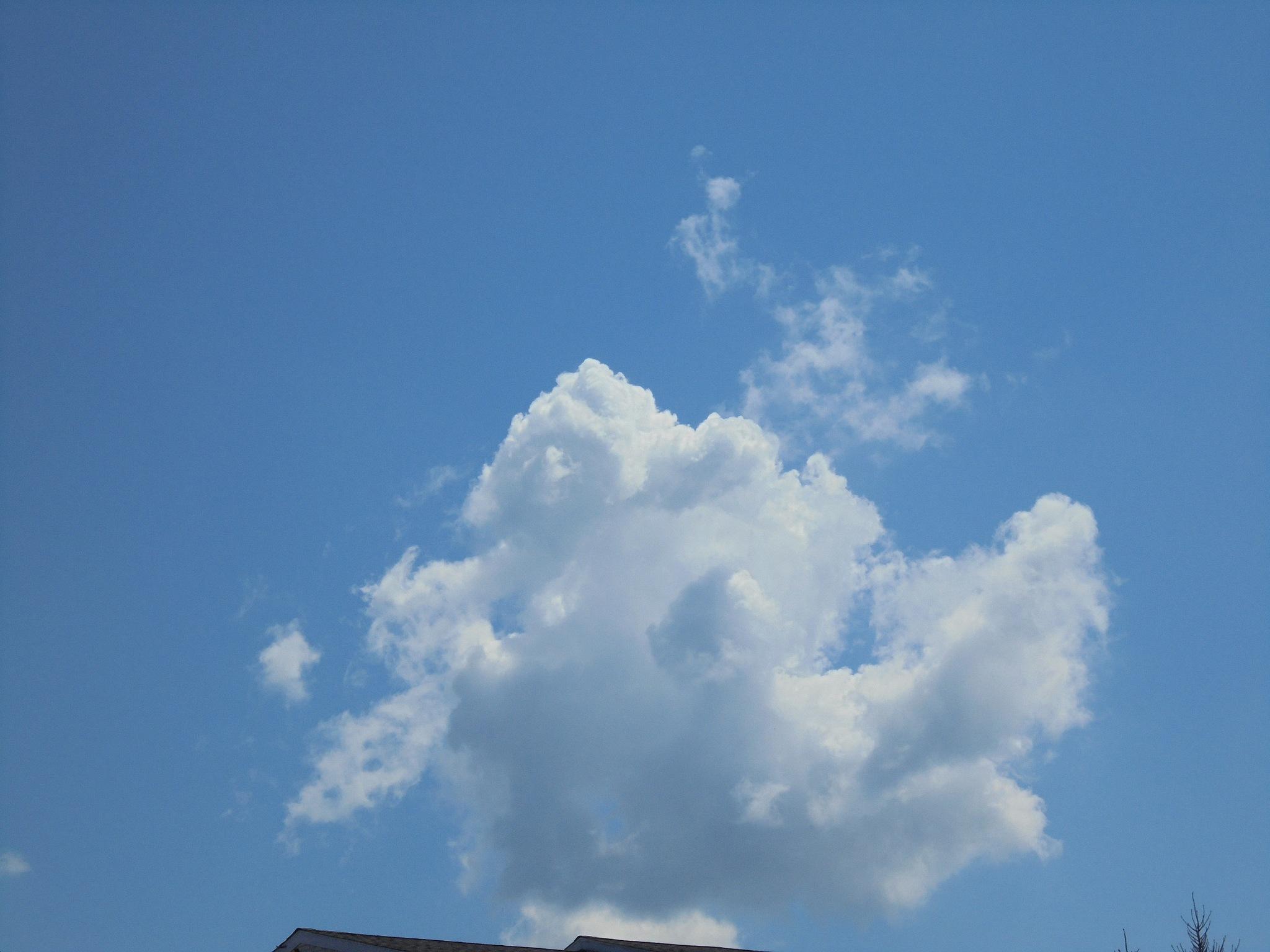 Cloud by Michelle