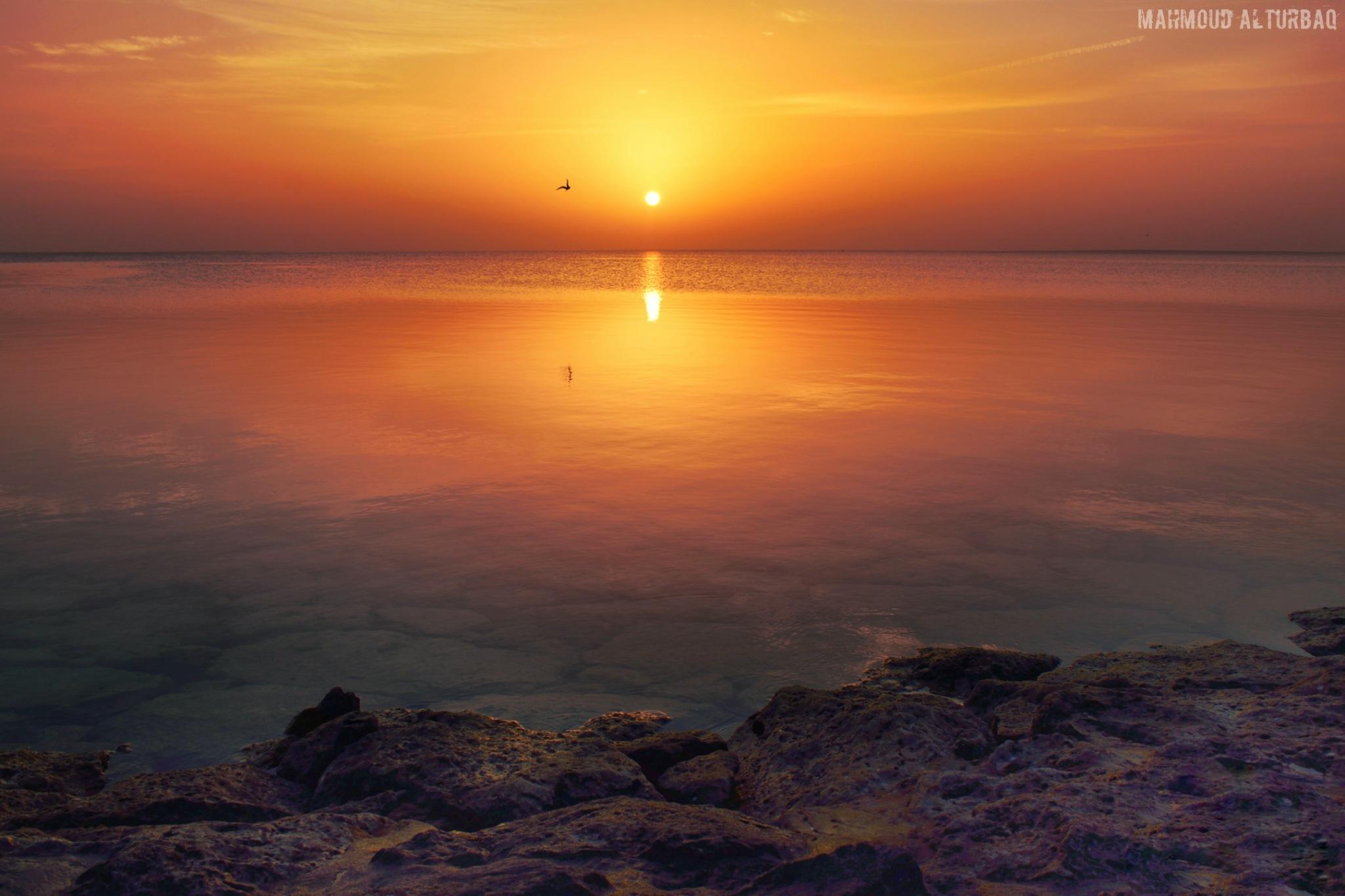 Romantic sunrise by Mahmoud Alturbaq