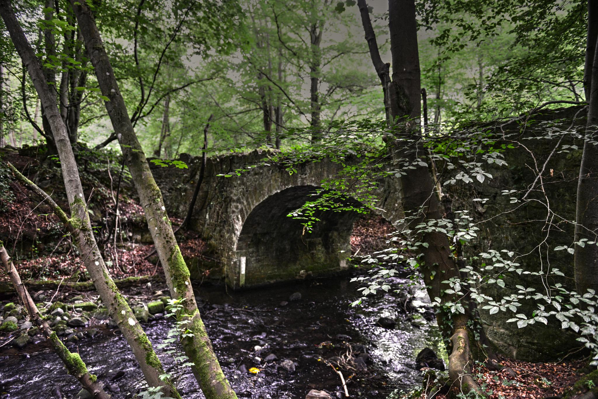 Old Bridge over the River Gore, Midlothian by Ann