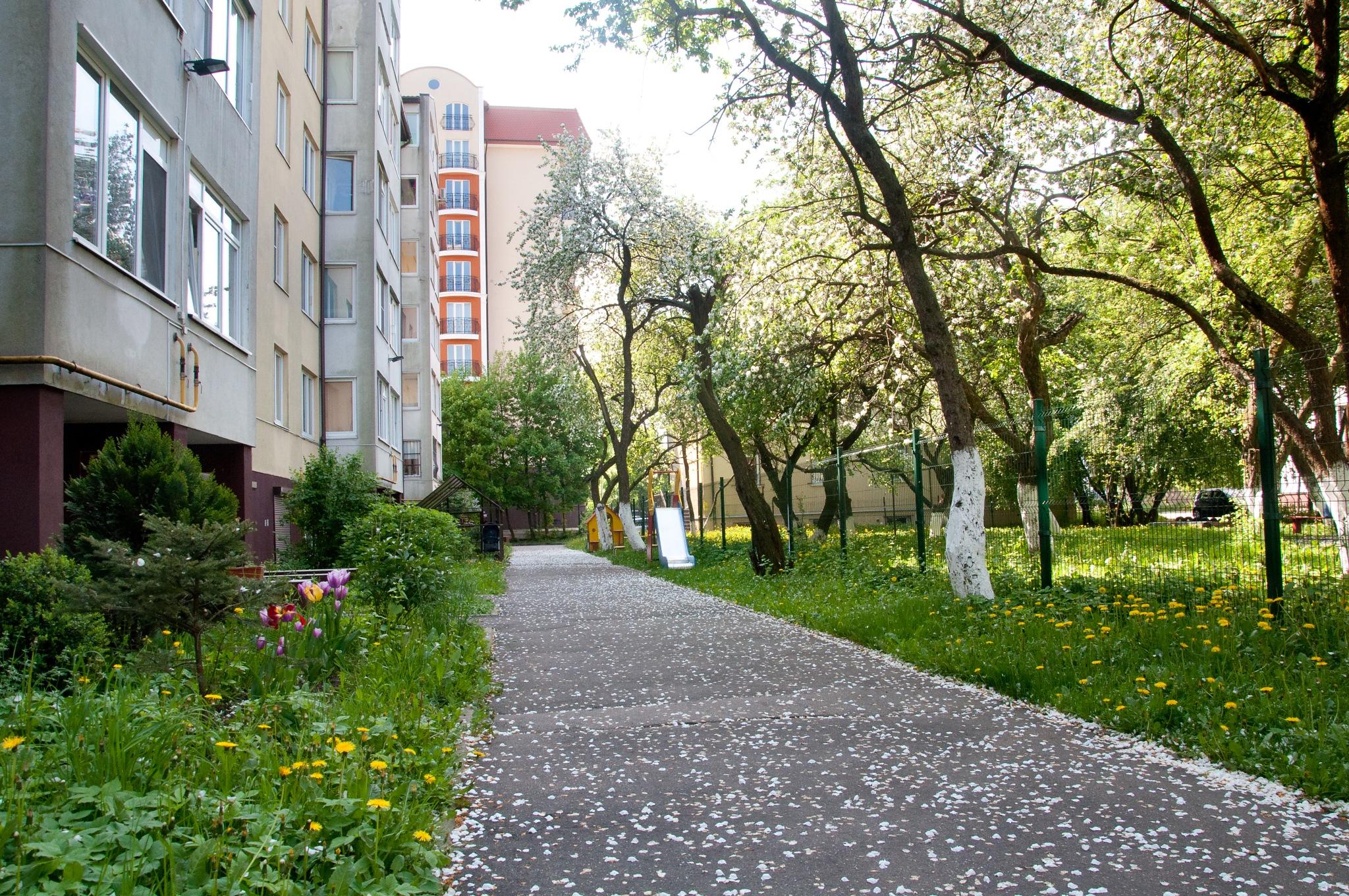 Courtyard in Kaliningrad by Anna Pronenko