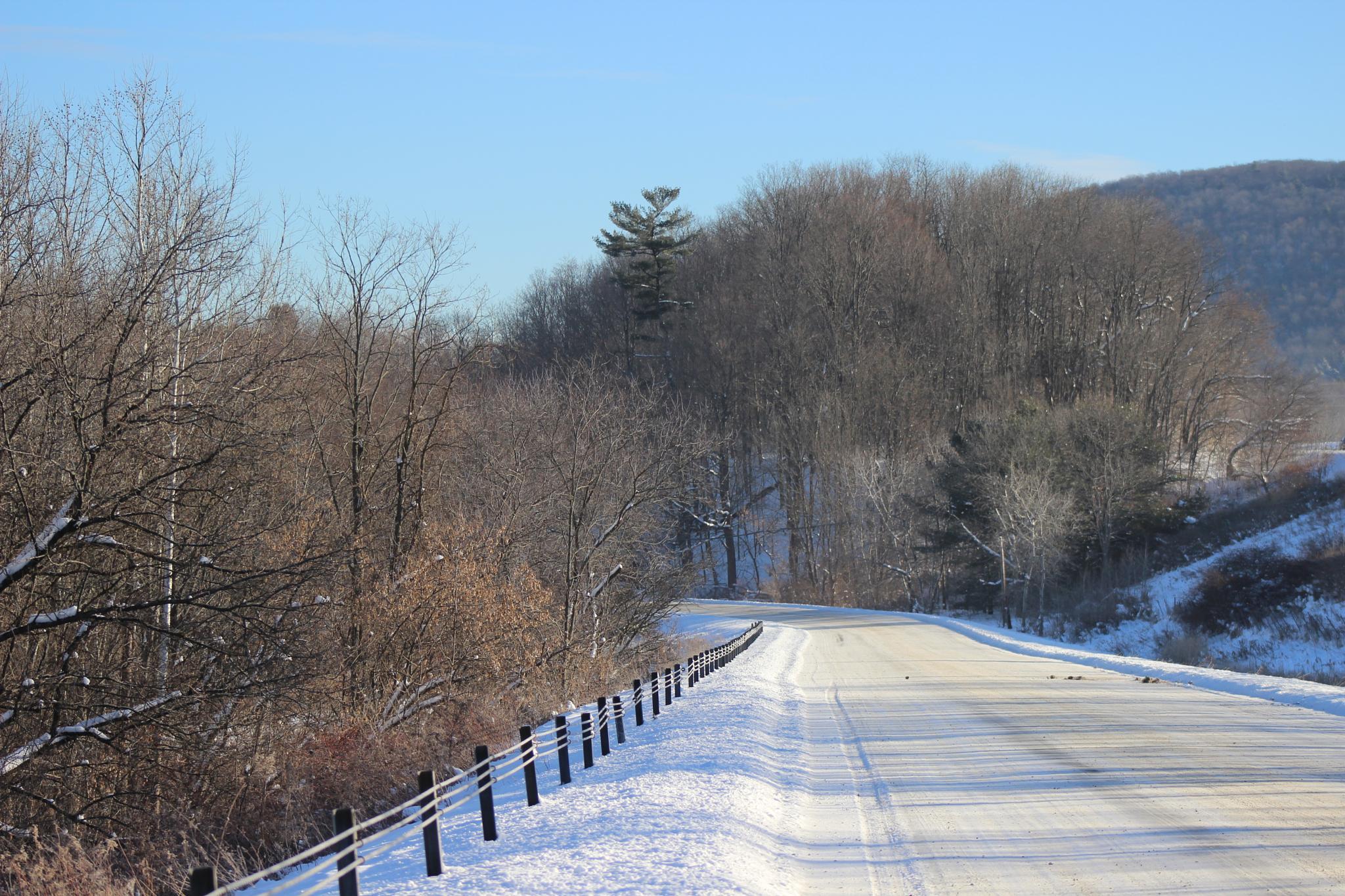 Snowy Road by Jennifer Rivers