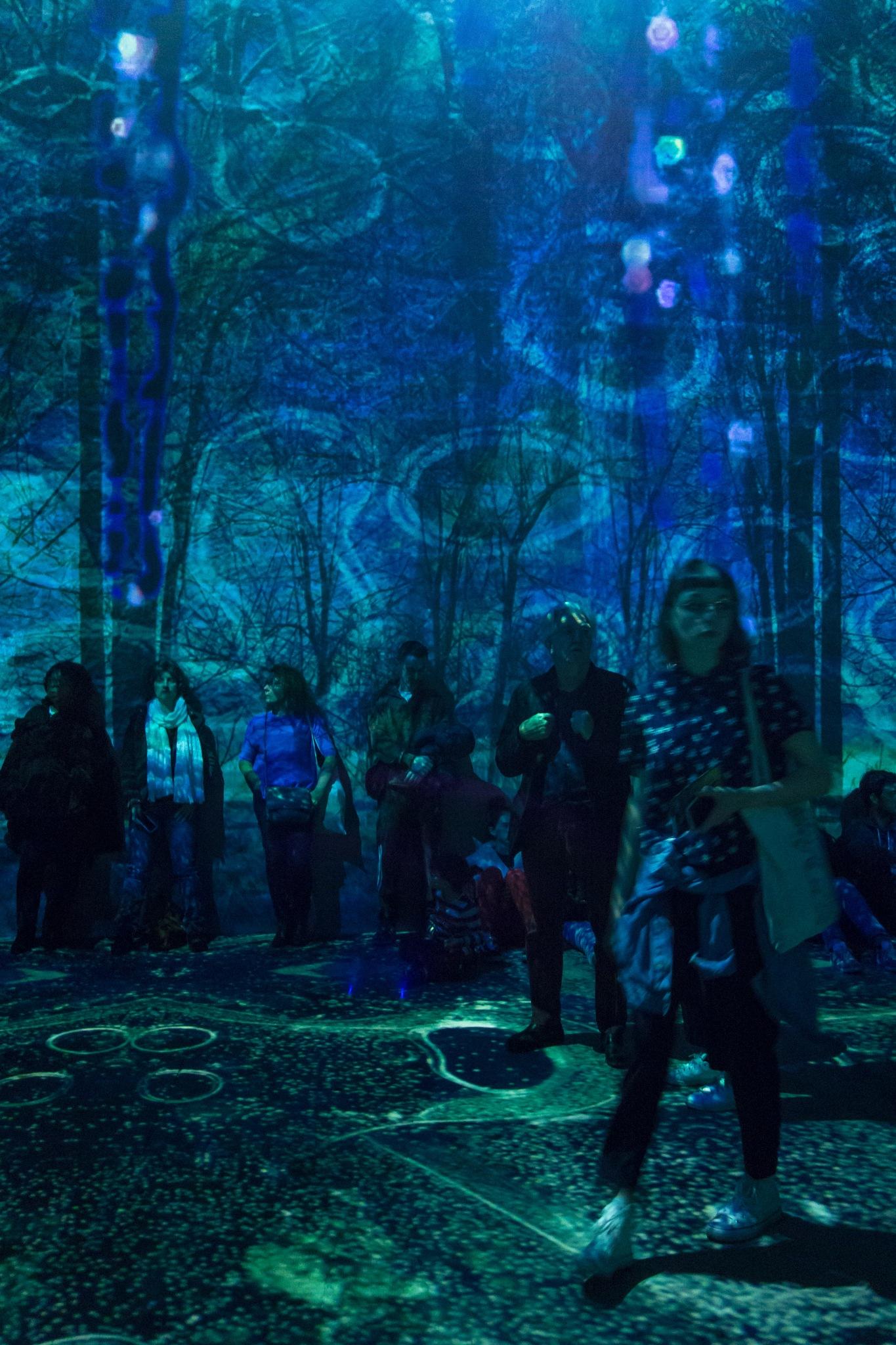 Hundertwasser exhibition by Hervé Samson