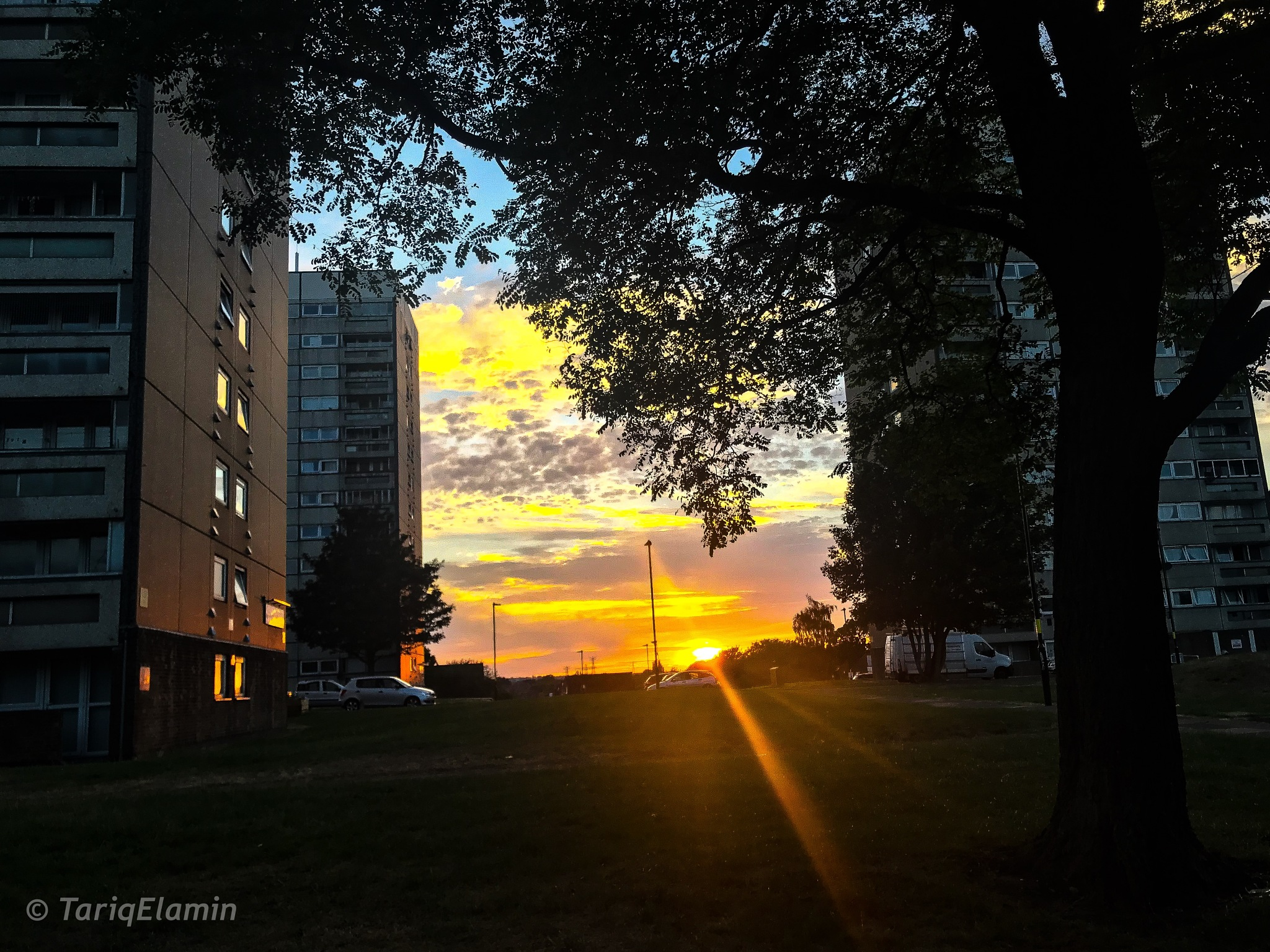 Sunset  by Tariq Elamin