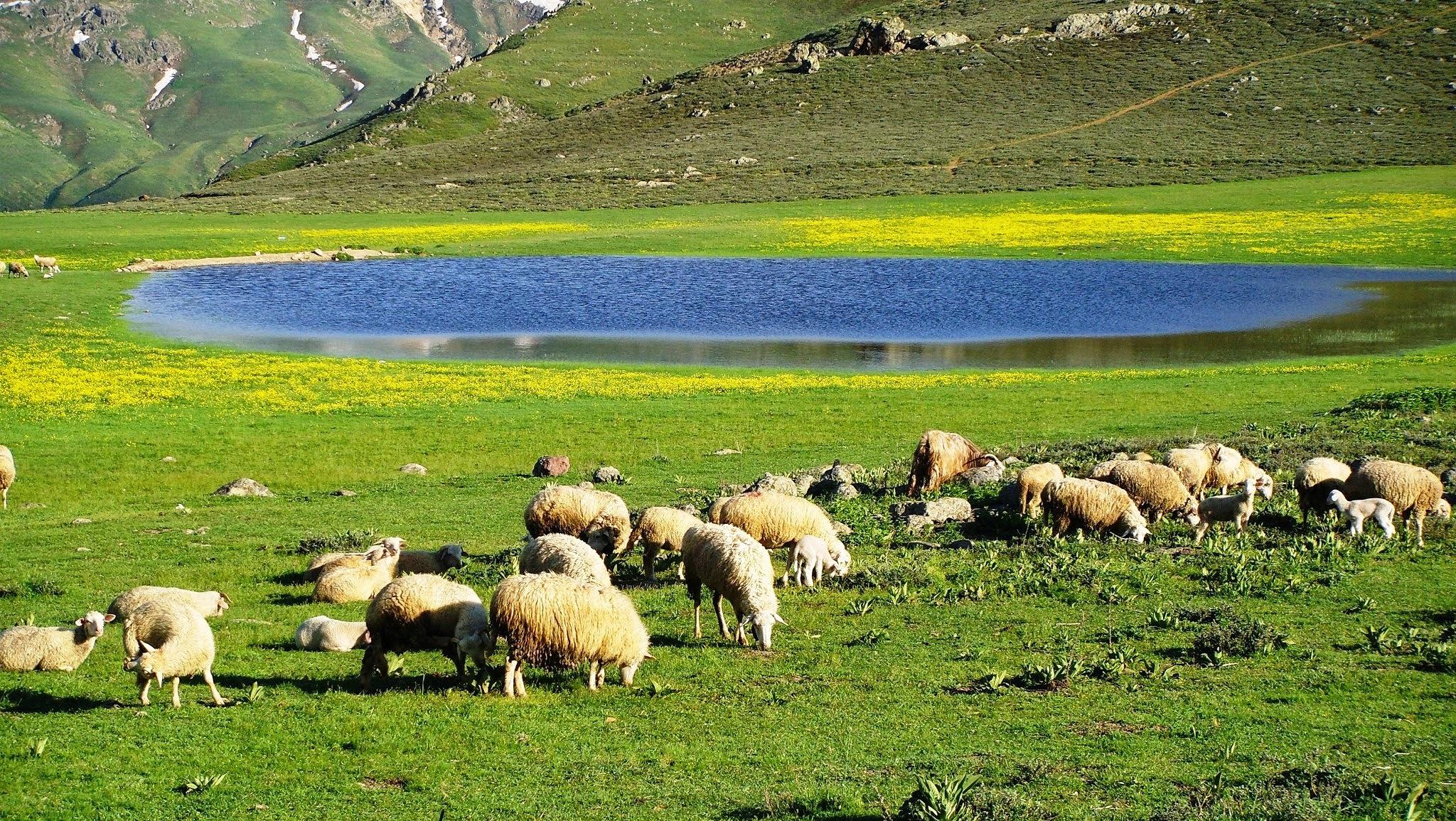 Emirdağları,Afyonkarahisar,TURKEY by Zekeriya