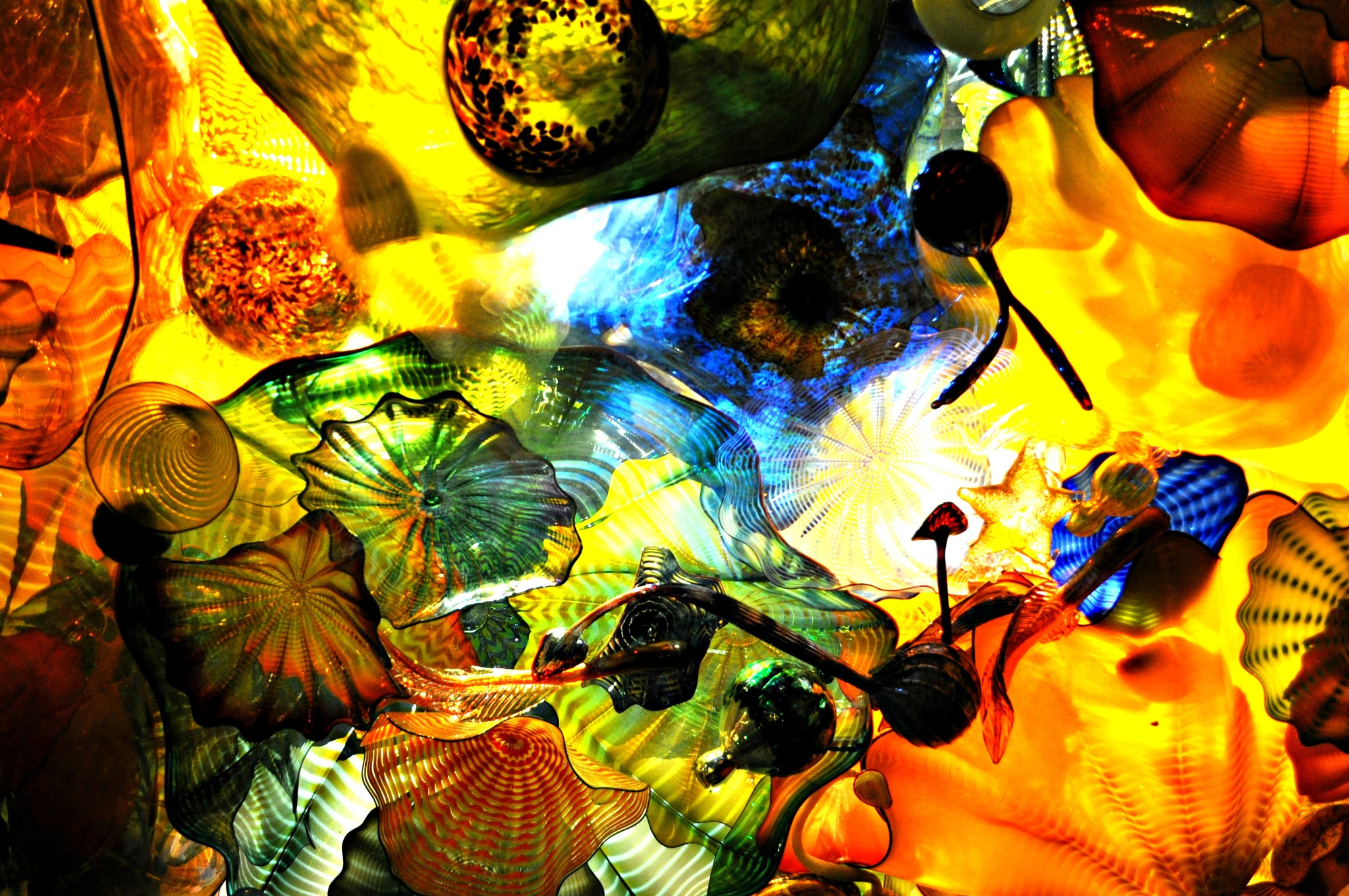 Chihuly Glass by Joan Guth-Filichia