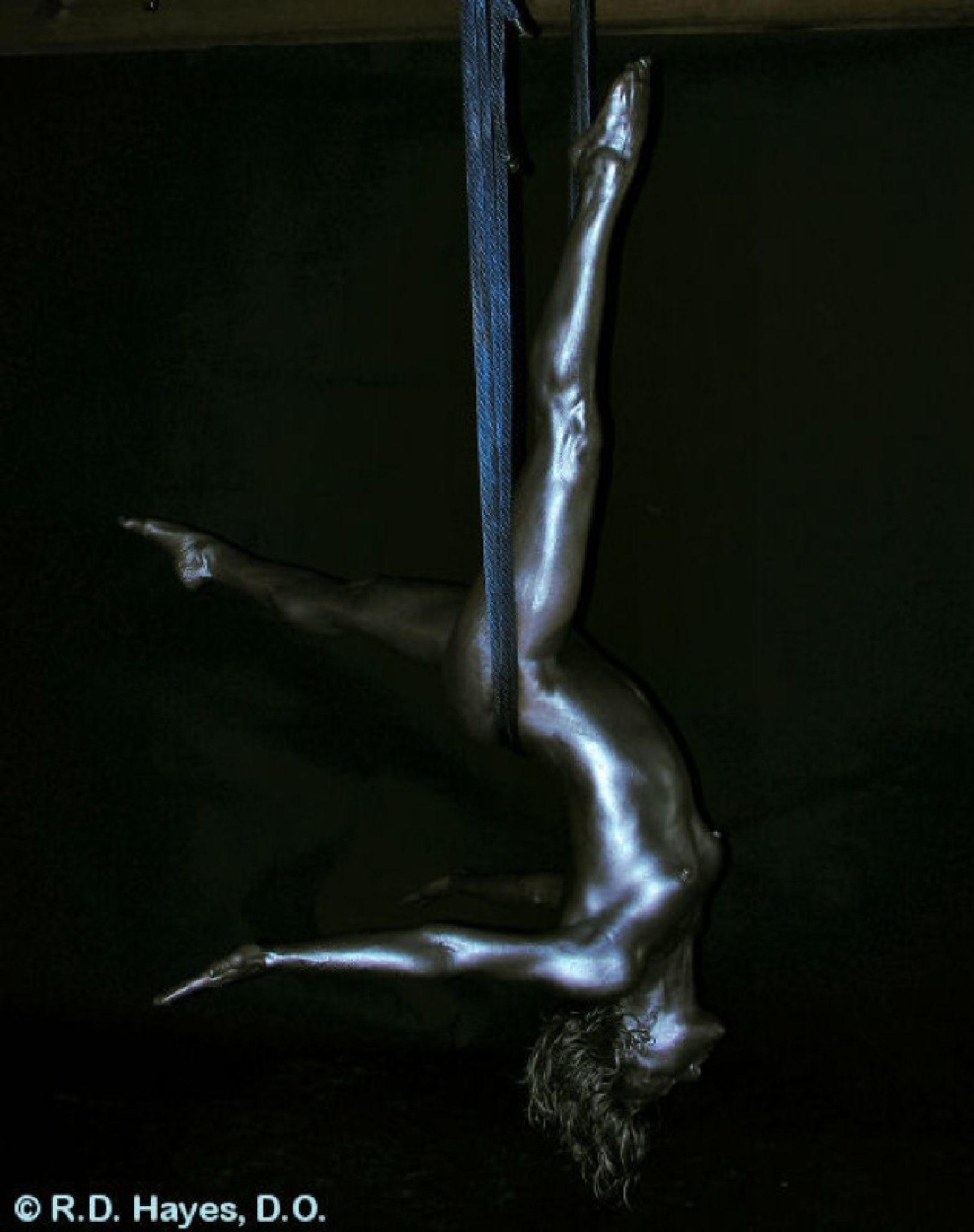 Dangle by Robert Hayes