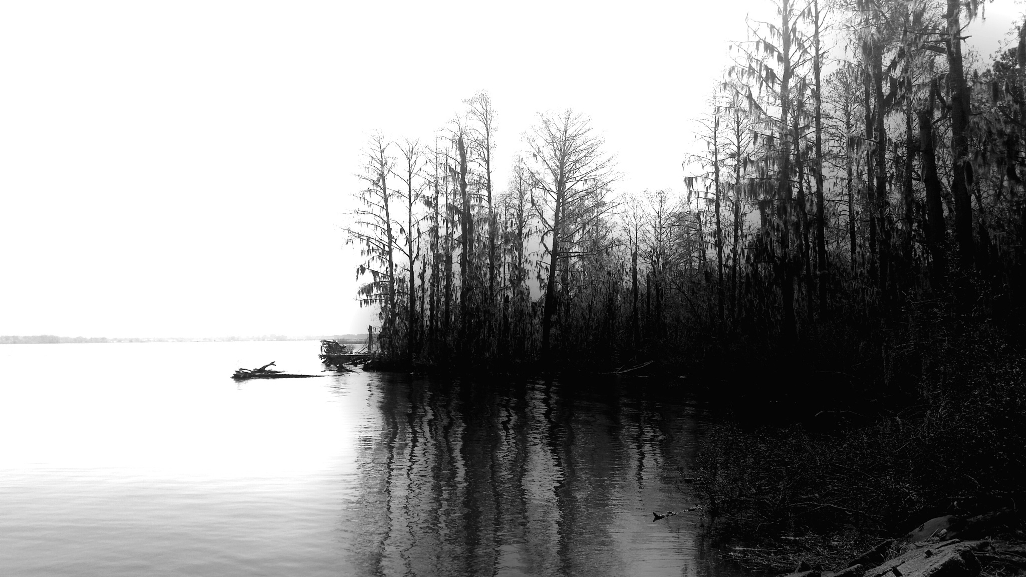 Photo in Random #nature #black and white #river #still