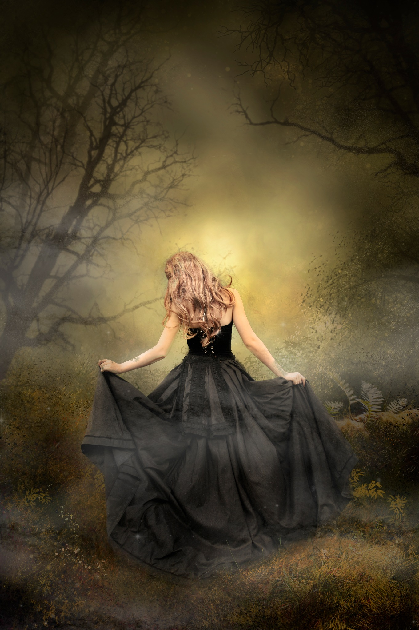 Through The  Mystic Forest by Brigitte Werner