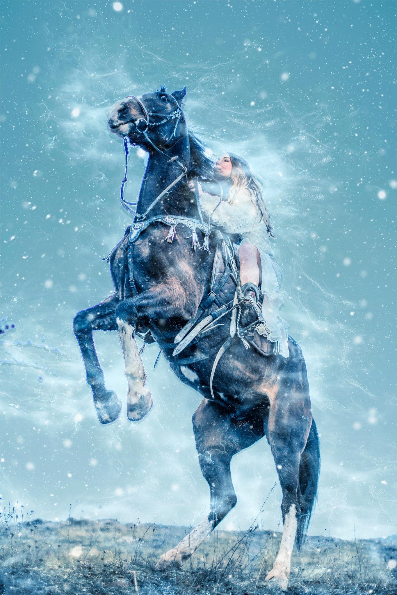 Blizzard by Art Tower Brigitte Werner