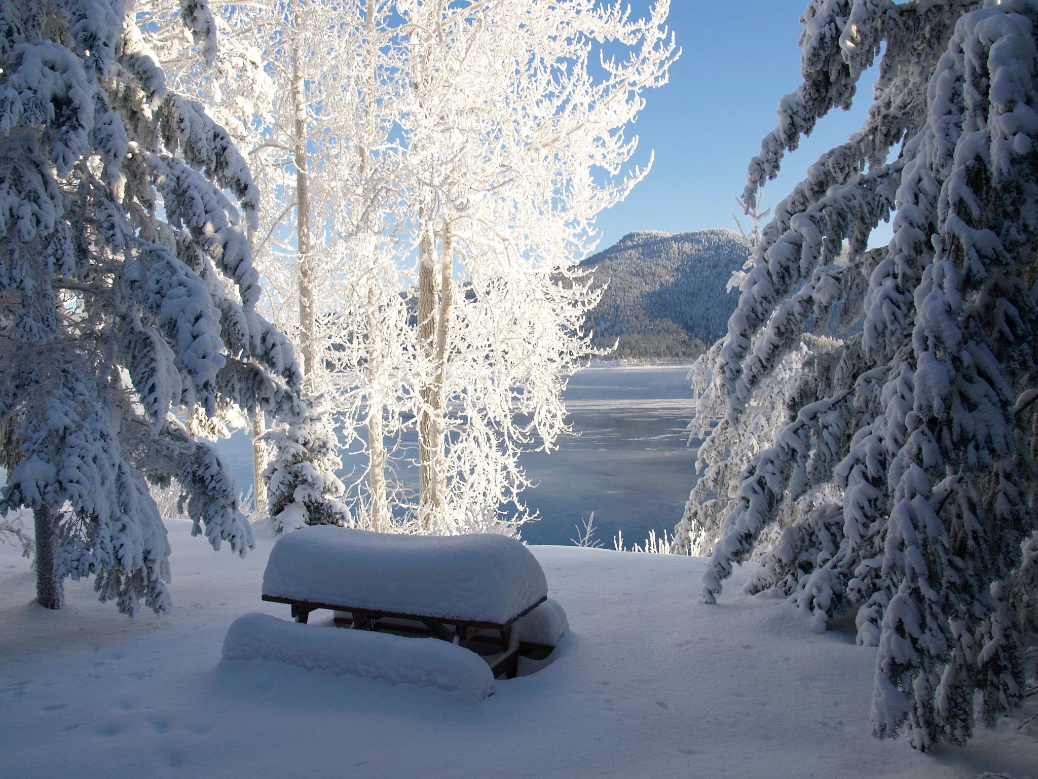Deep Winter by Brigitte Werner