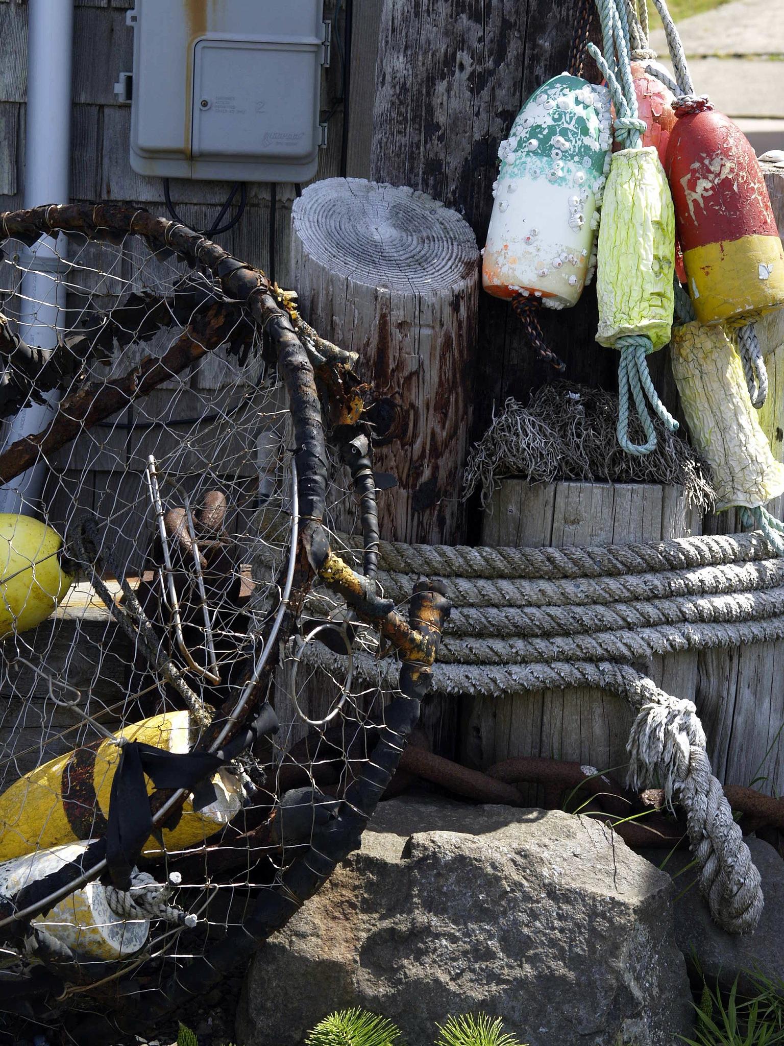 Maritime Still life by Brigitte Werner