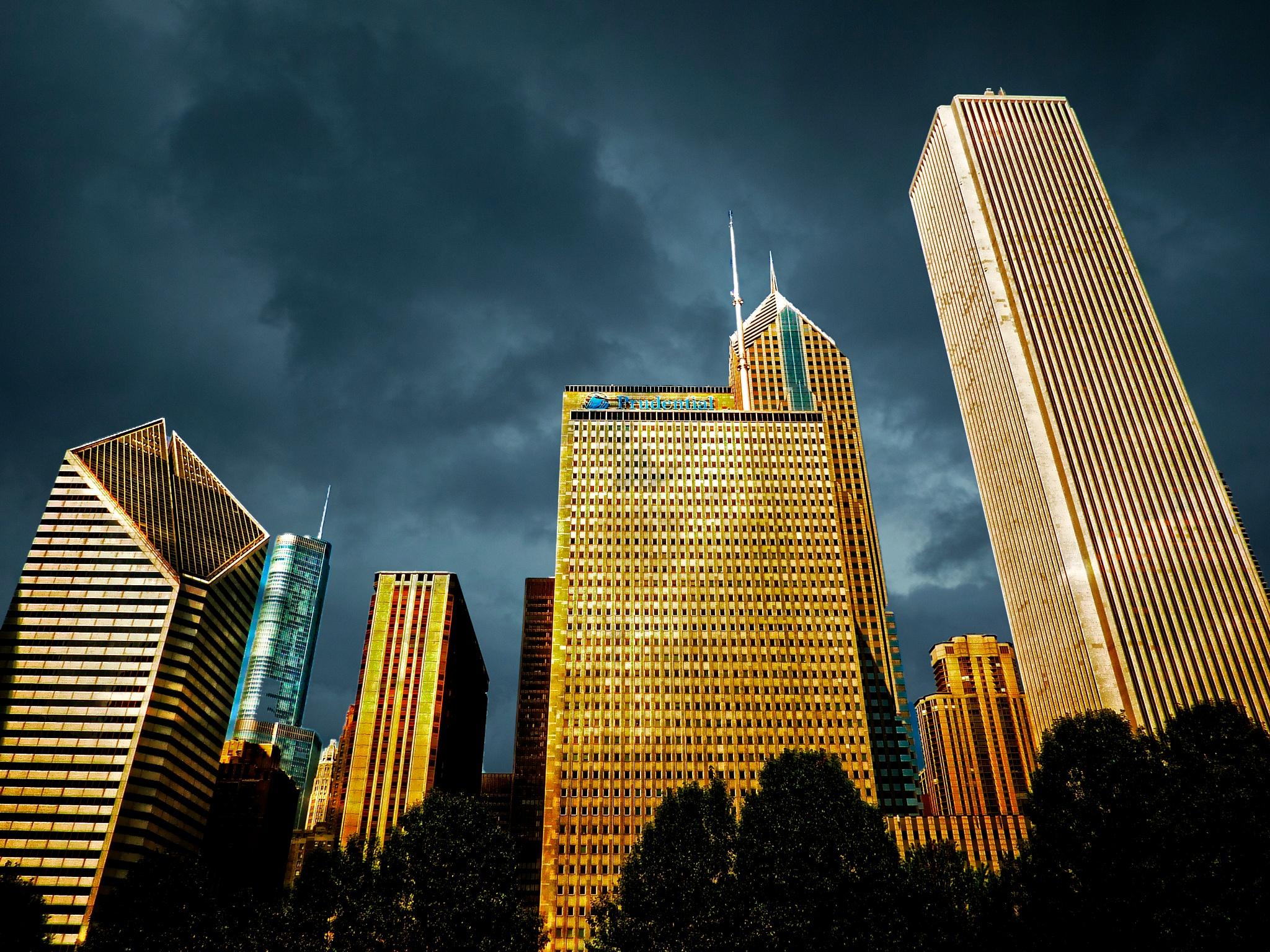 Chicago's Skyline by Brigitte Werner