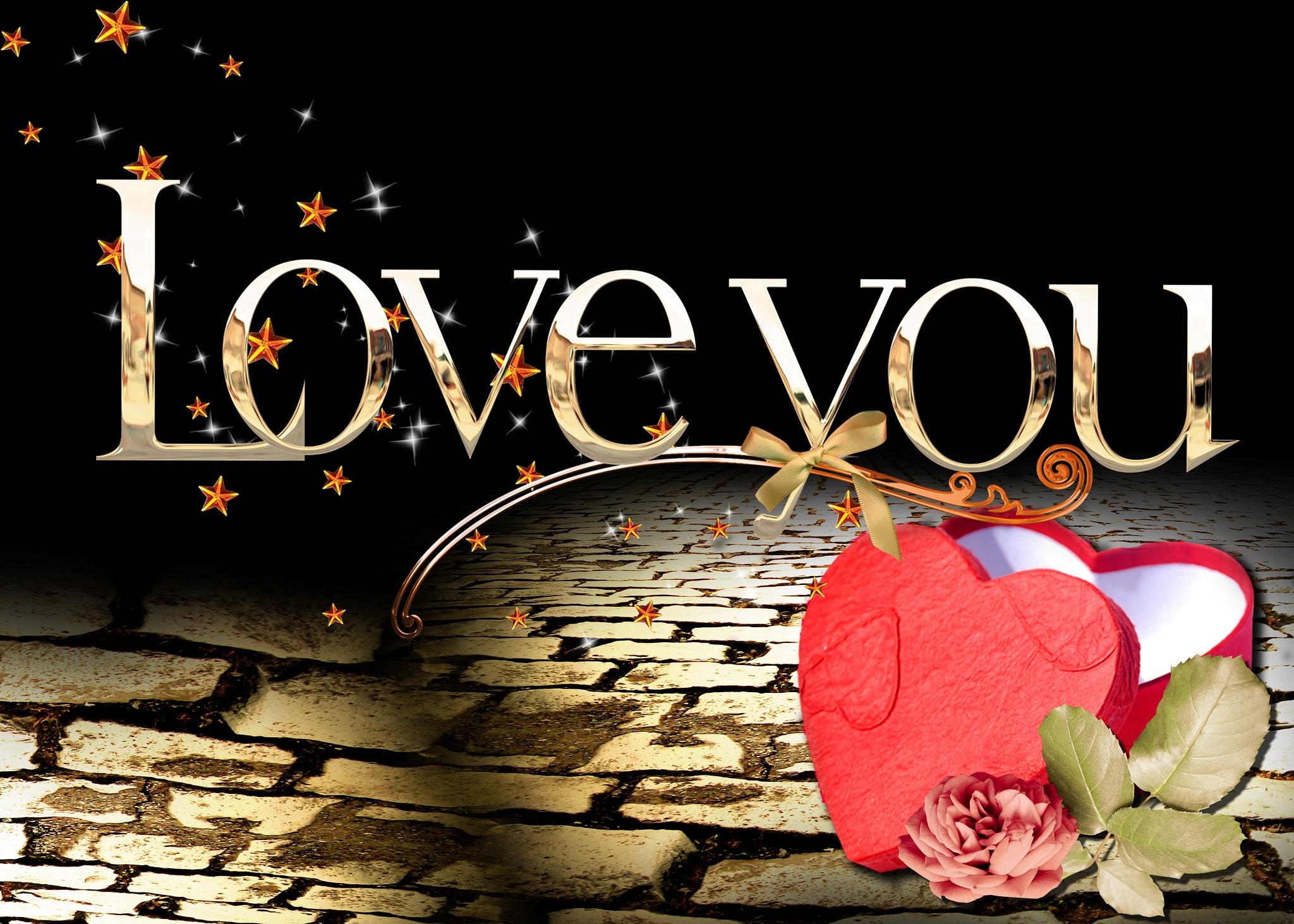 Falling in Love by Brigitte Werner