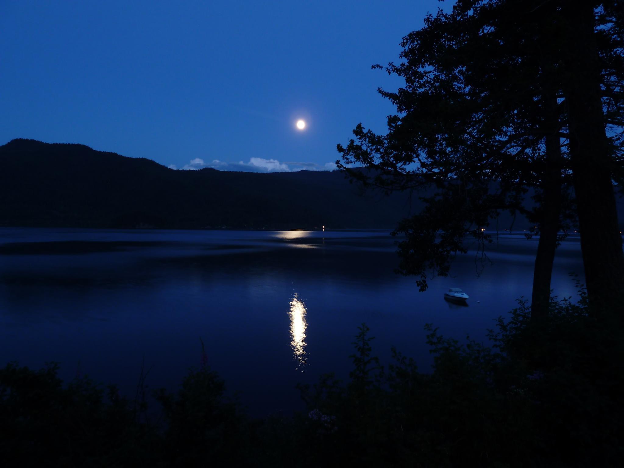 Moon Light by Brigitte Werner