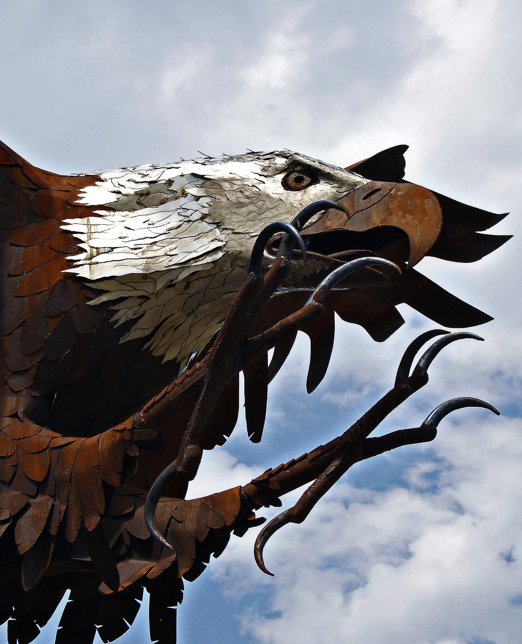 Iron Eagle by Brigitte Werner