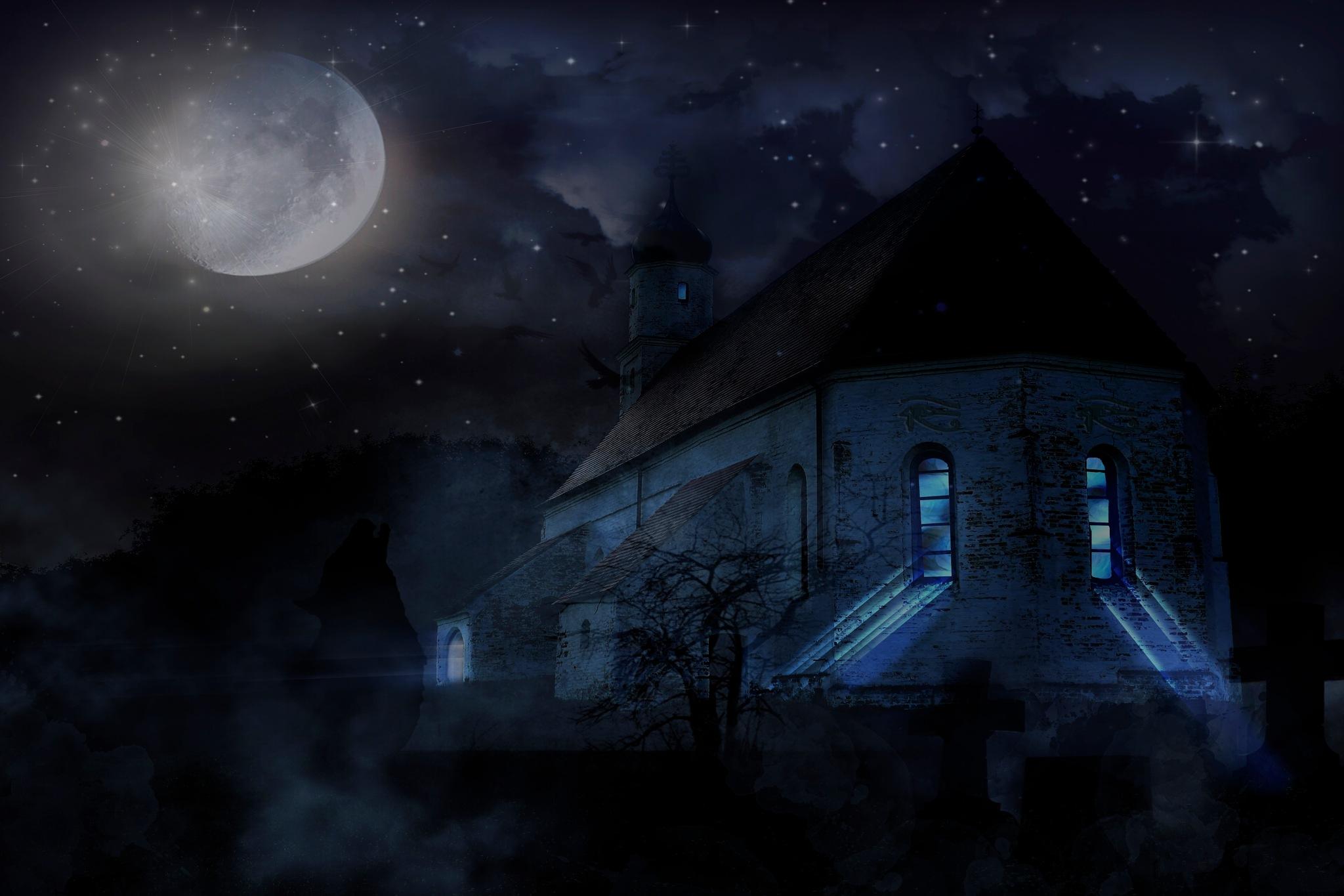 Dark Night by Brigitte Werner
