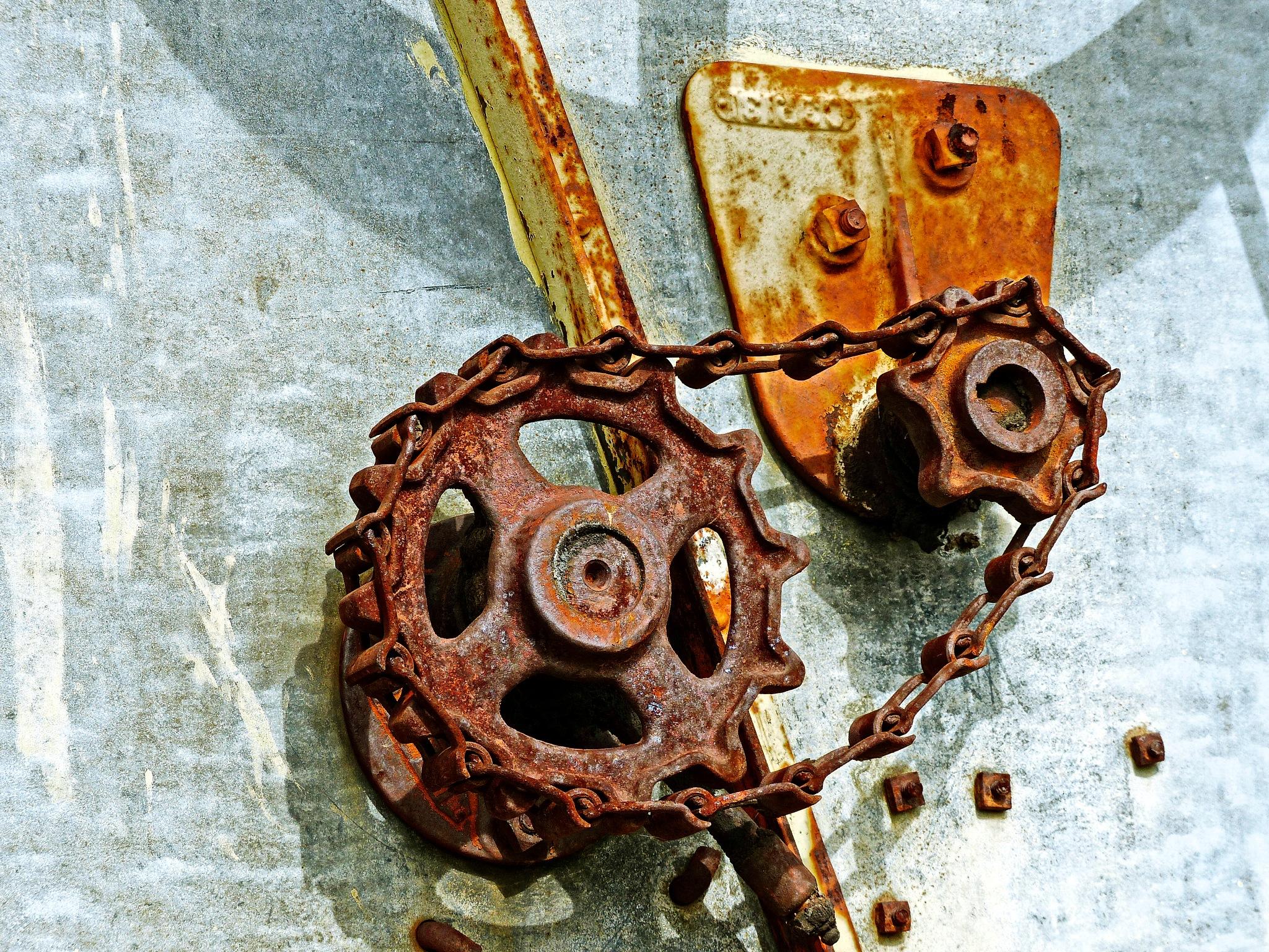 Antique Chain Drive by Brigitte Werner