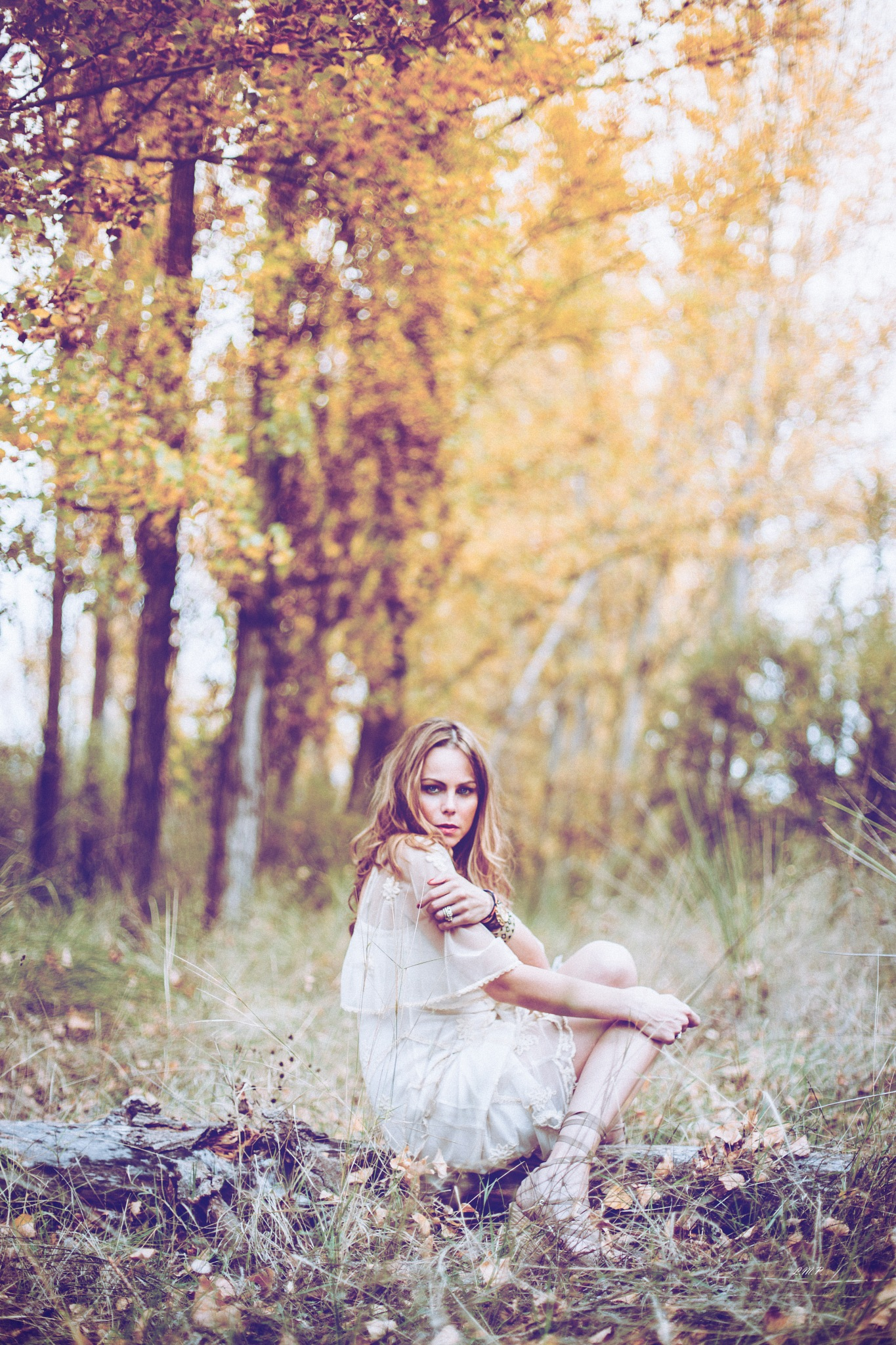 The fall, the warm beauty by lumario79