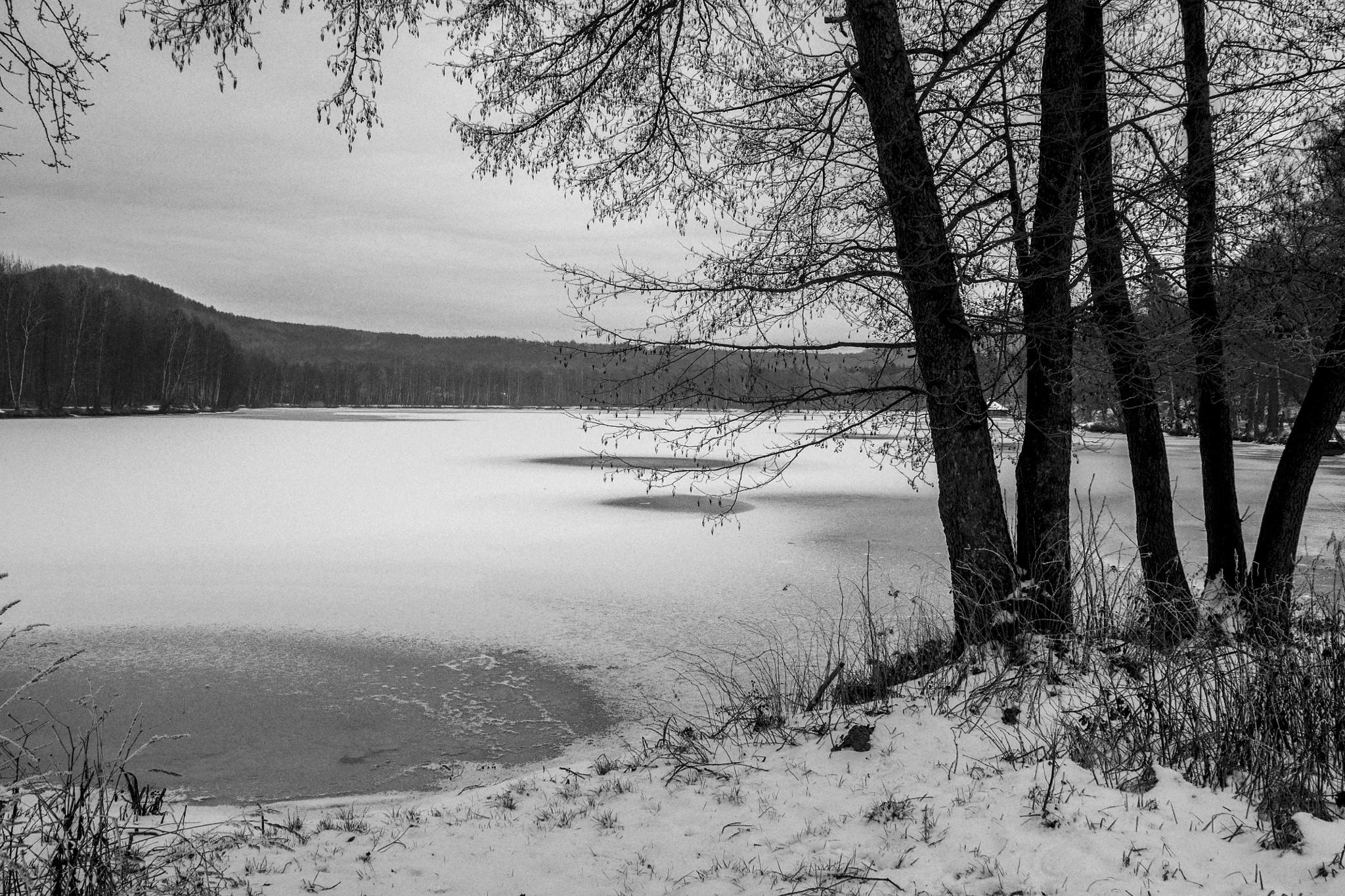 January in lake. by Dagmar Germaničova