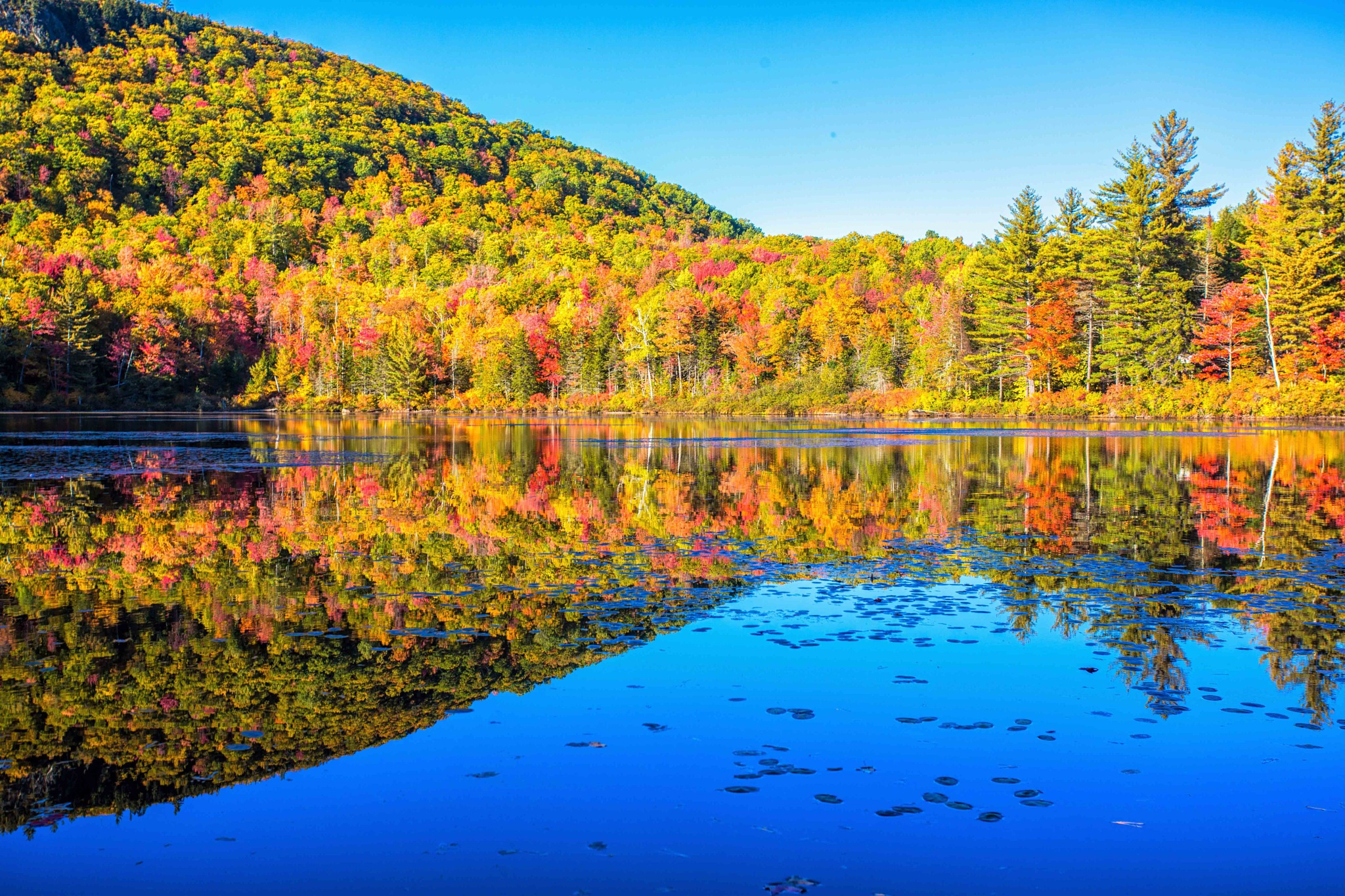 Fall Reflection by melissamachonis