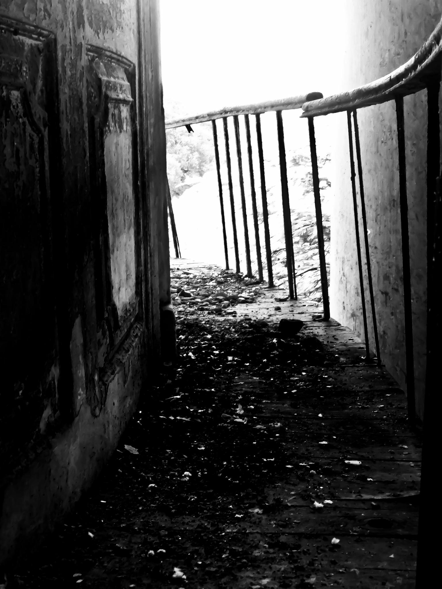 Abandoned path  by Vidya Rada