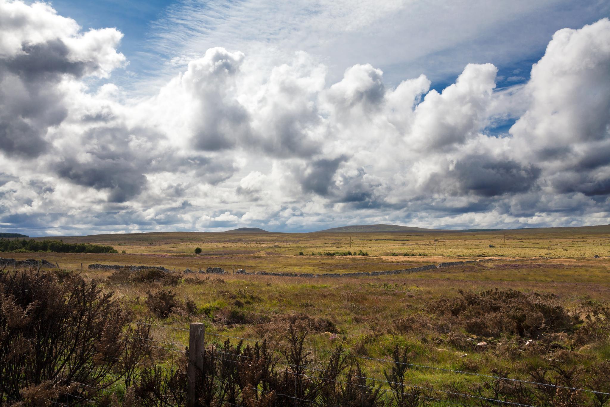 Highlands, Scotland by robertofavini
